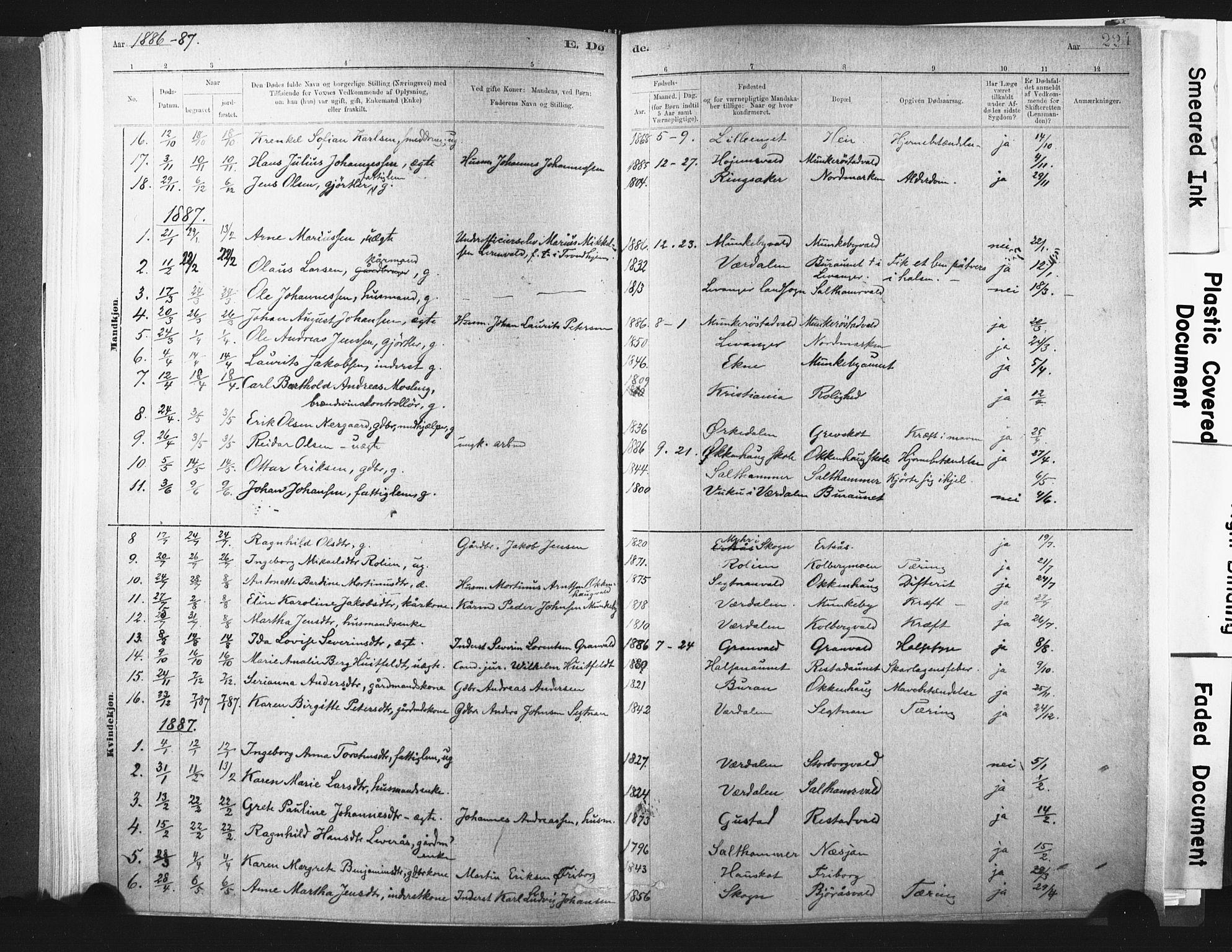 SAT, Ministerialprotokoller, klokkerbøker og fødselsregistre - Nord-Trøndelag, 721/L0207: Ministerialbok nr. 721A02, 1880-1911, s. 224