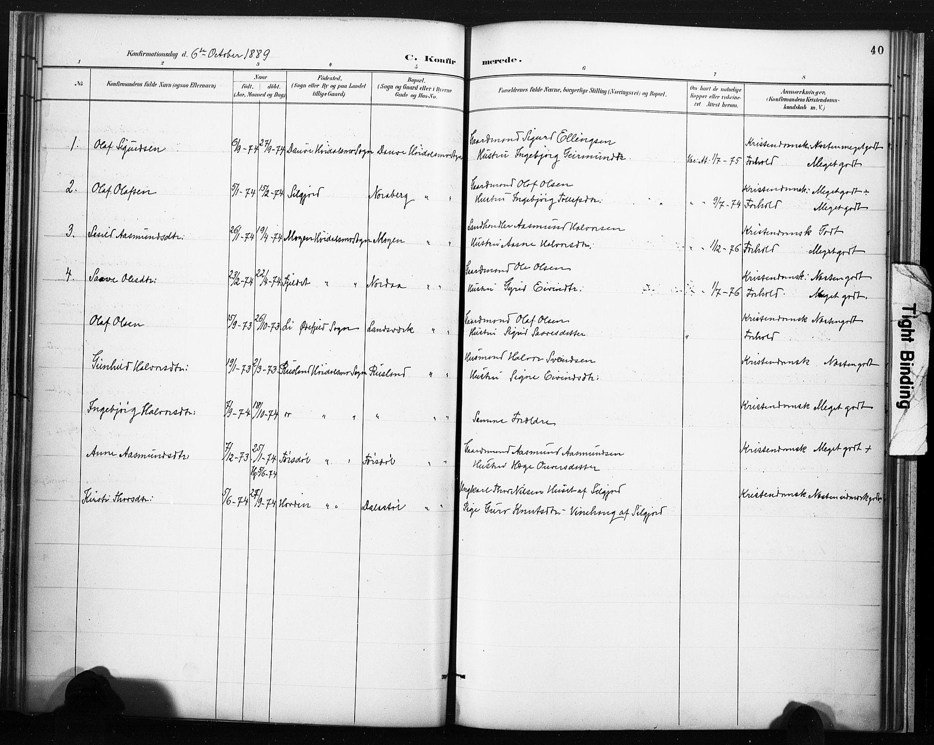SAKO, Lårdal kirkebøker, F/Fc/L0002: Ministerialbok nr. III 2, 1887-1906, s. 40