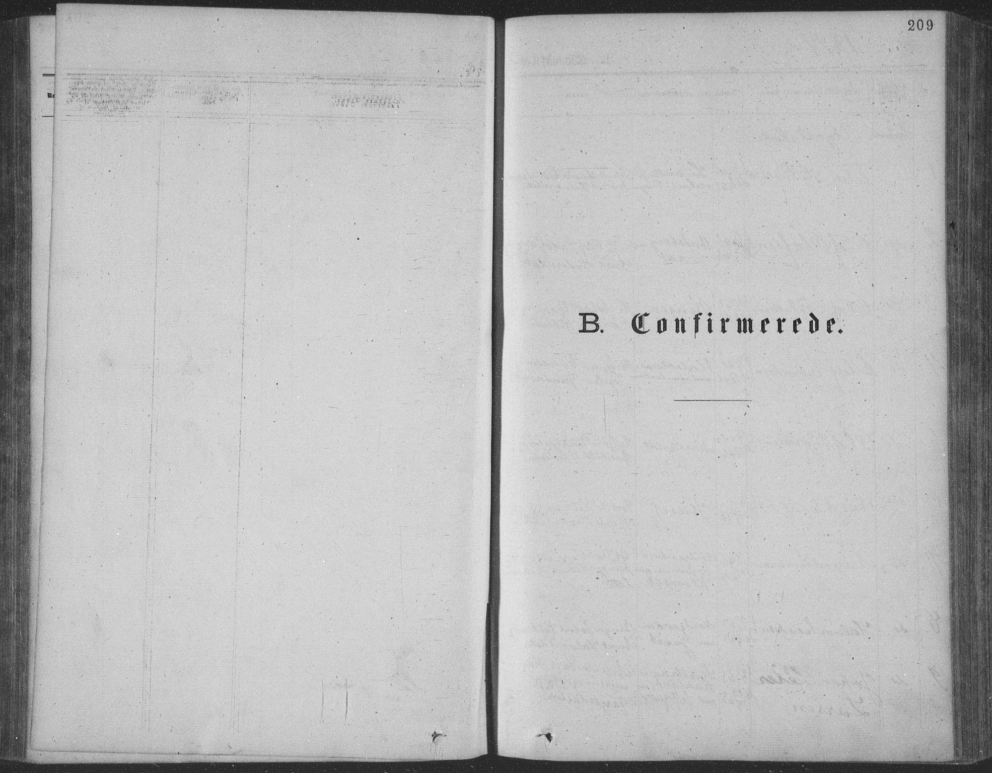 SAKO, Seljord kirkebøker, F/Fa/L0014: Ministerialbok nr. I 14, 1877-1886, s. 209