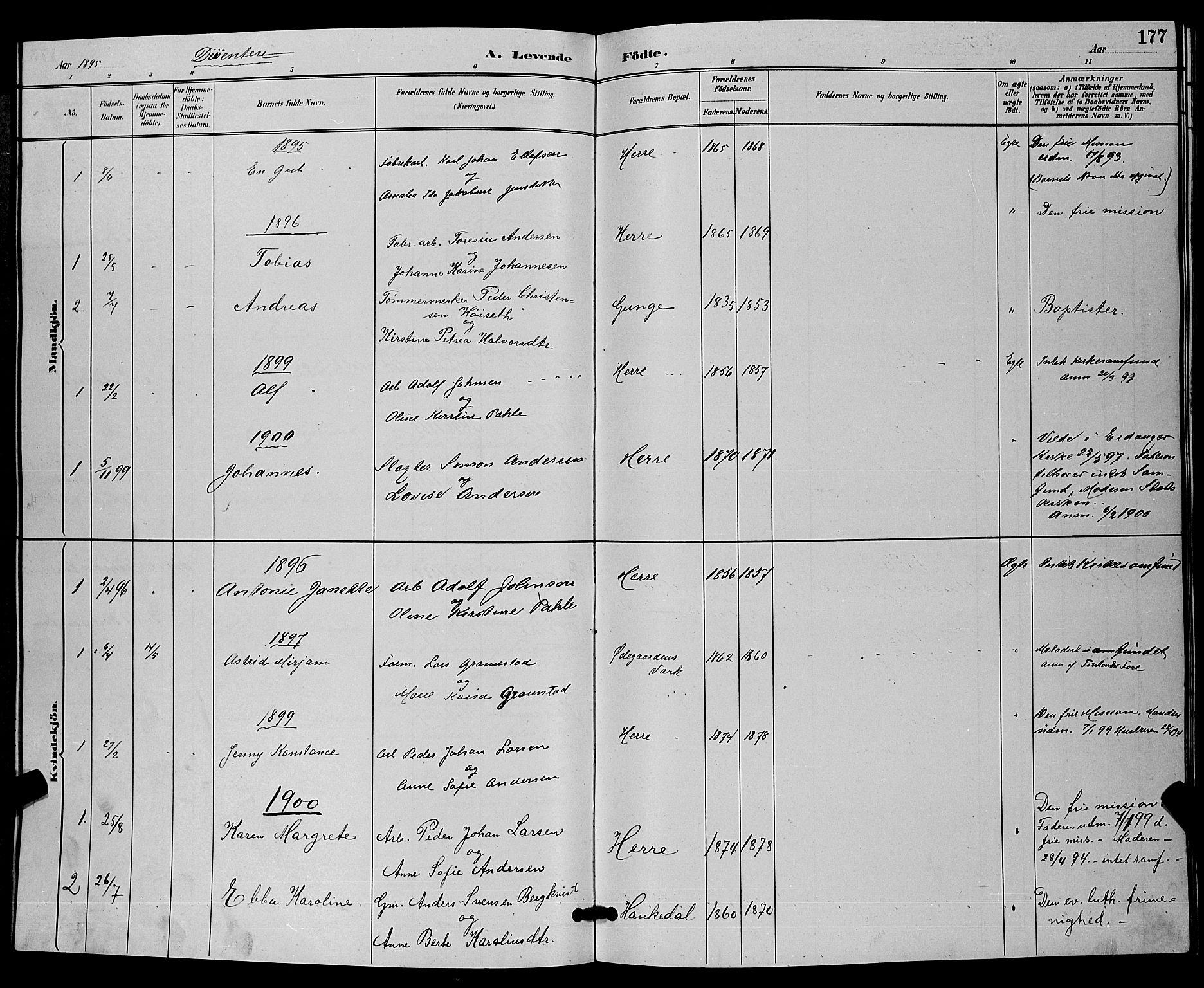 SAKO, Bamble kirkebøker, G/Ga/L0009: Klokkerbok nr. I 9, 1888-1900, s. 177