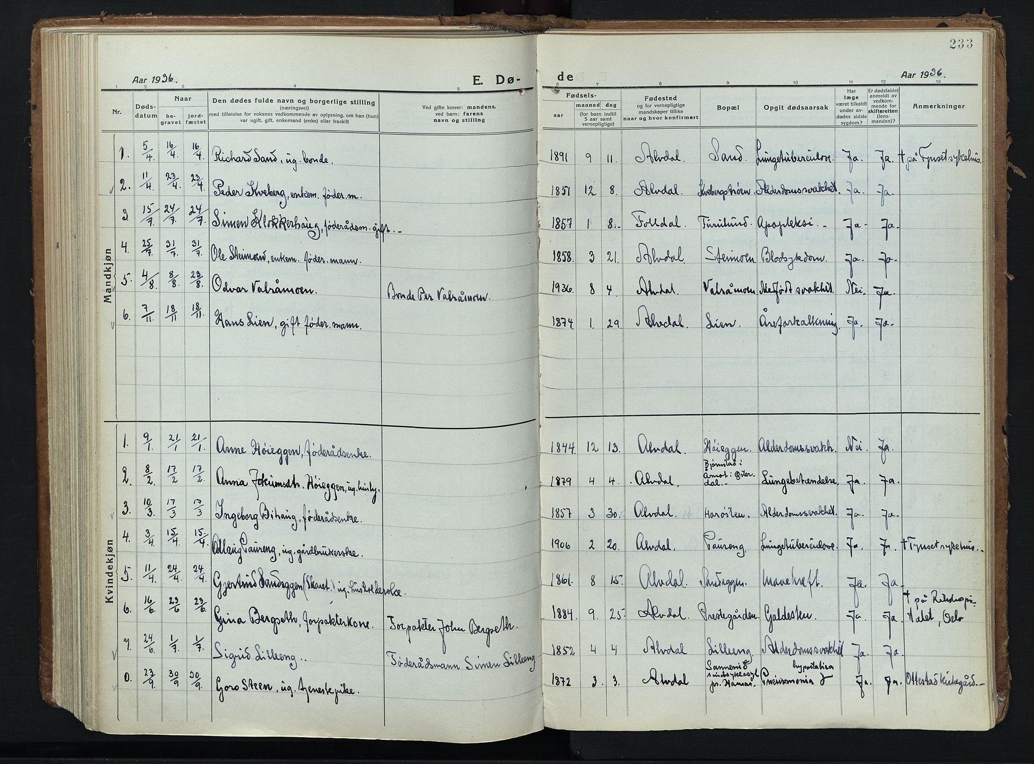 SAH, Alvdal prestekontor, Ministerialbok nr. 6, 1920-1937, s. 233