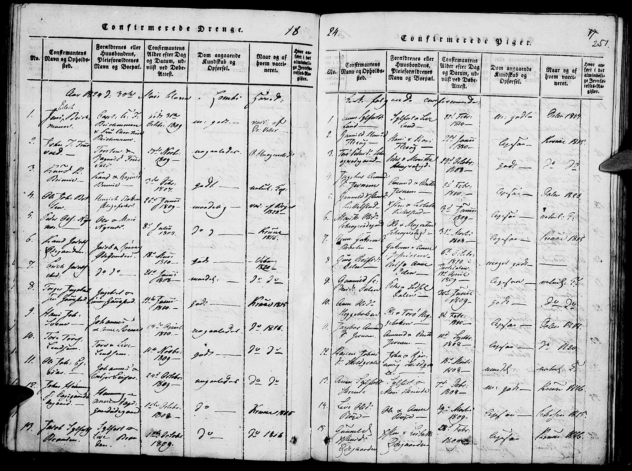 SAH, Lom prestekontor, K/L0004: Ministerialbok nr. 4, 1815-1825, s. 251