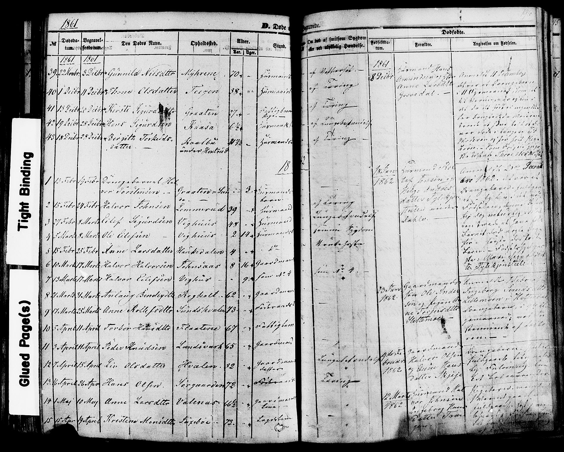 SAKO, Sauherad kirkebøker, F/Fa/L0007: Ministerialbok nr. I 7, 1851-1873, s. 196