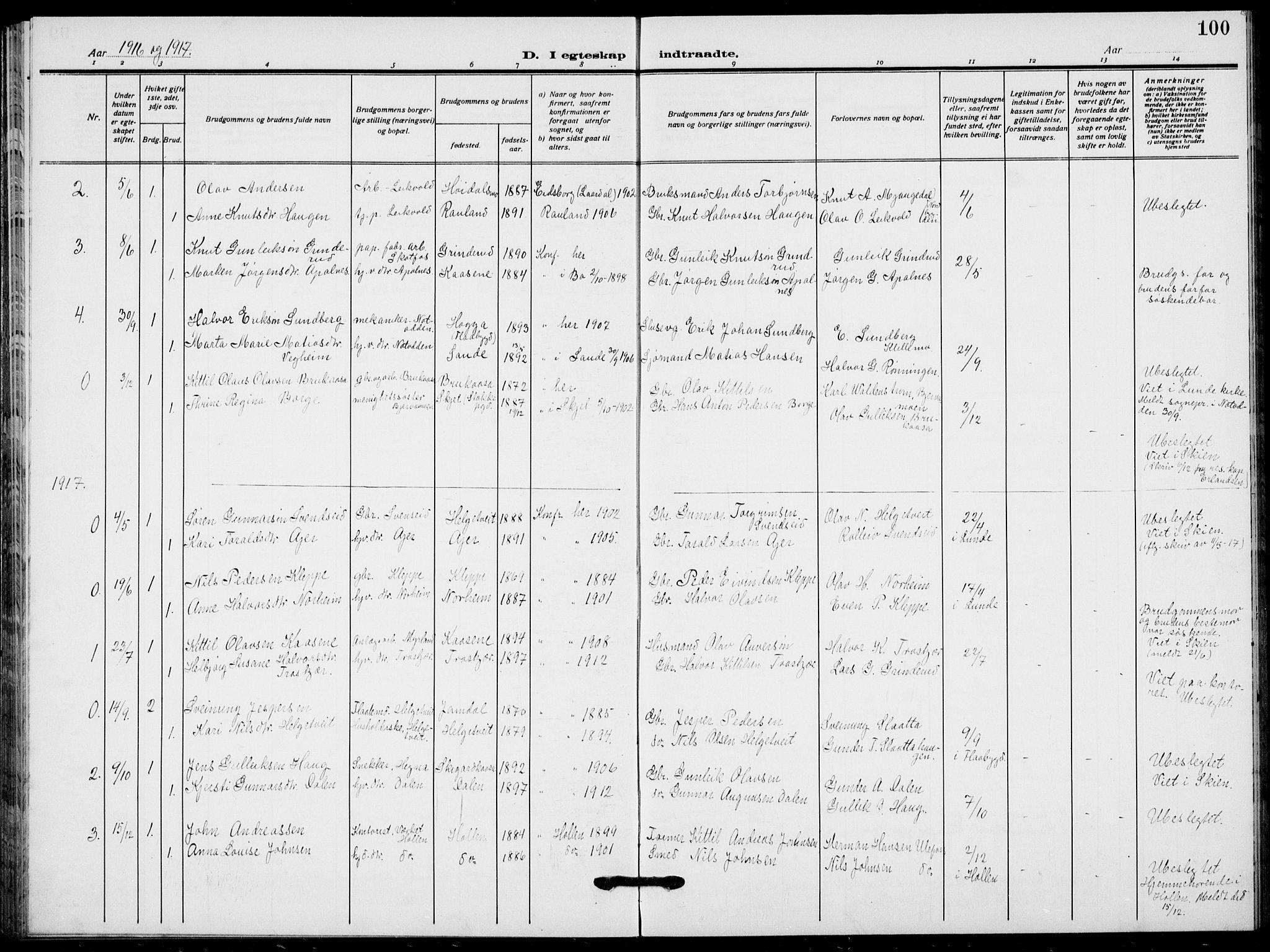 SAKO, Lunde kirkebøker, F/Fa/L0005: Ministerialbok nr. I 5, 1914-1922, s. 100