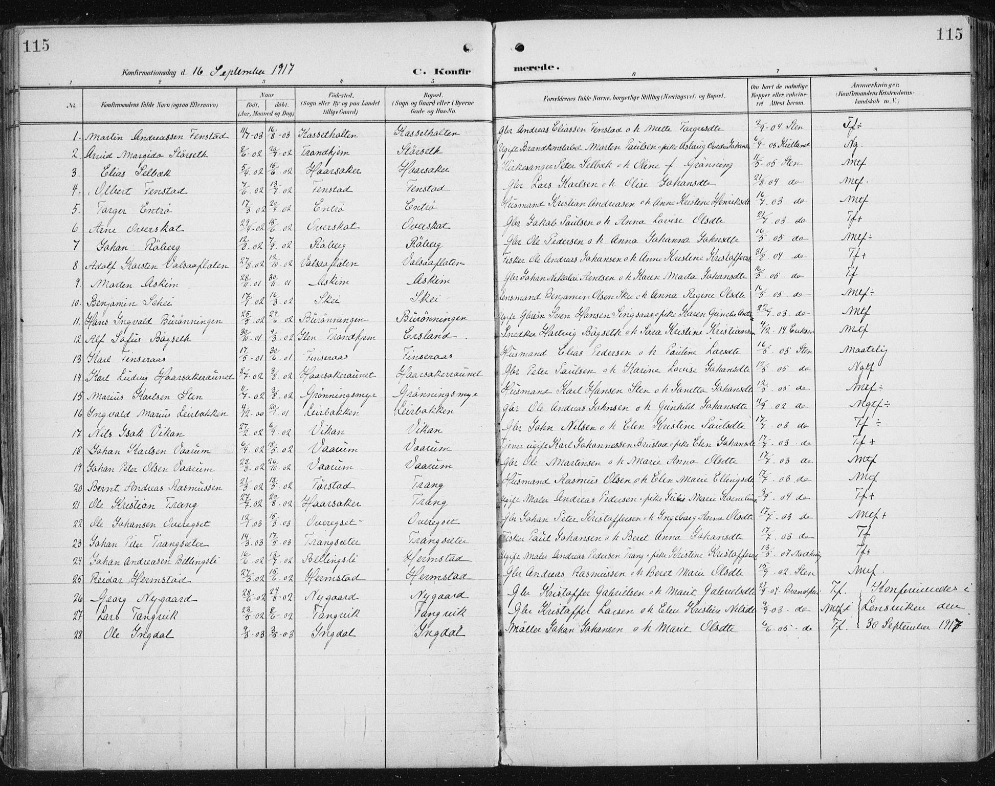 SAT, Ministerialprotokoller, klokkerbøker og fødselsregistre - Sør-Trøndelag, 646/L0616: Ministerialbok nr. 646A14, 1900-1918, s. 115
