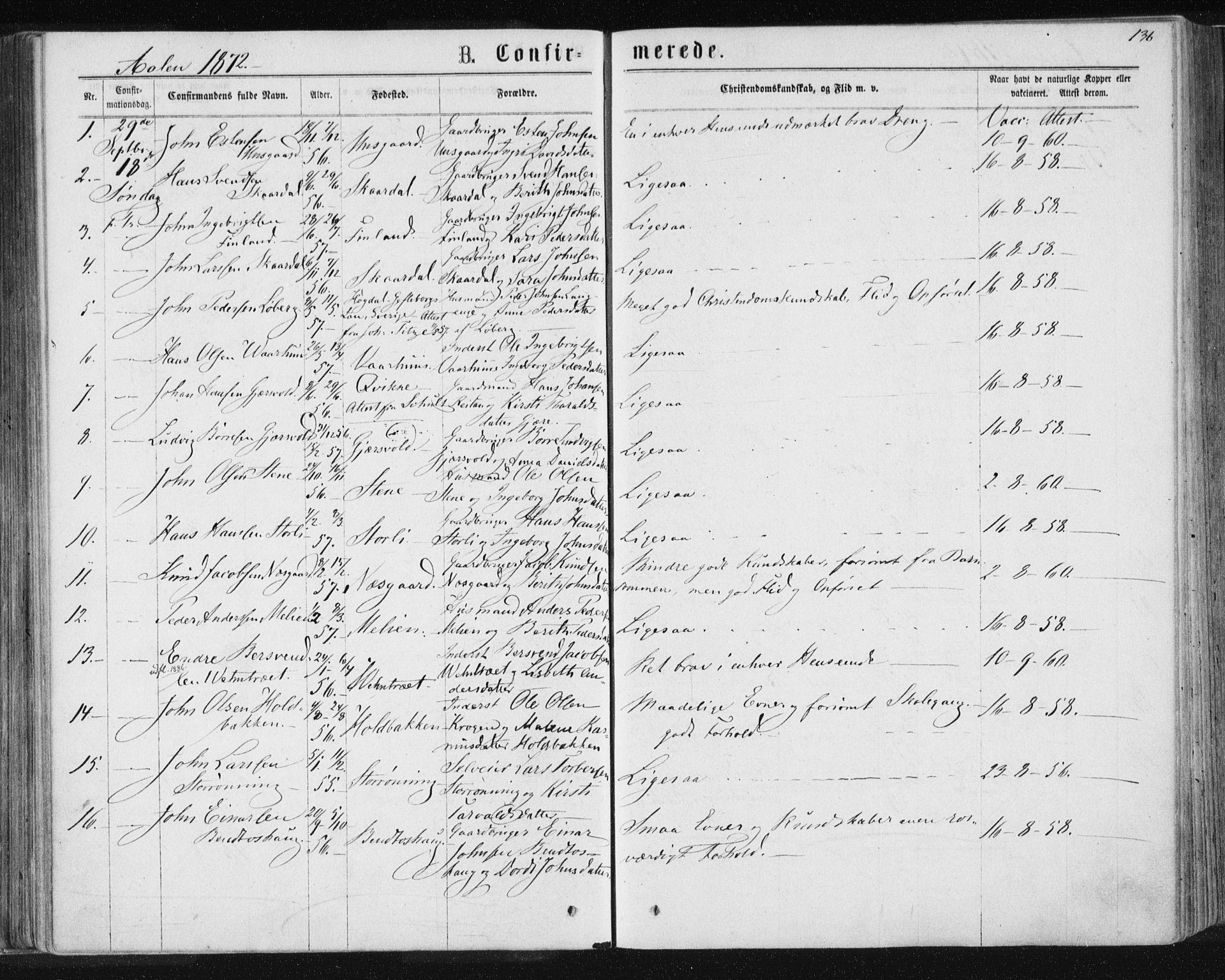 SAT, Ministerialprotokoller, klokkerbøker og fødselsregistre - Sør-Trøndelag, 685/L0971: Ministerialbok nr. 685A08 /3, 1870-1879, s. 136