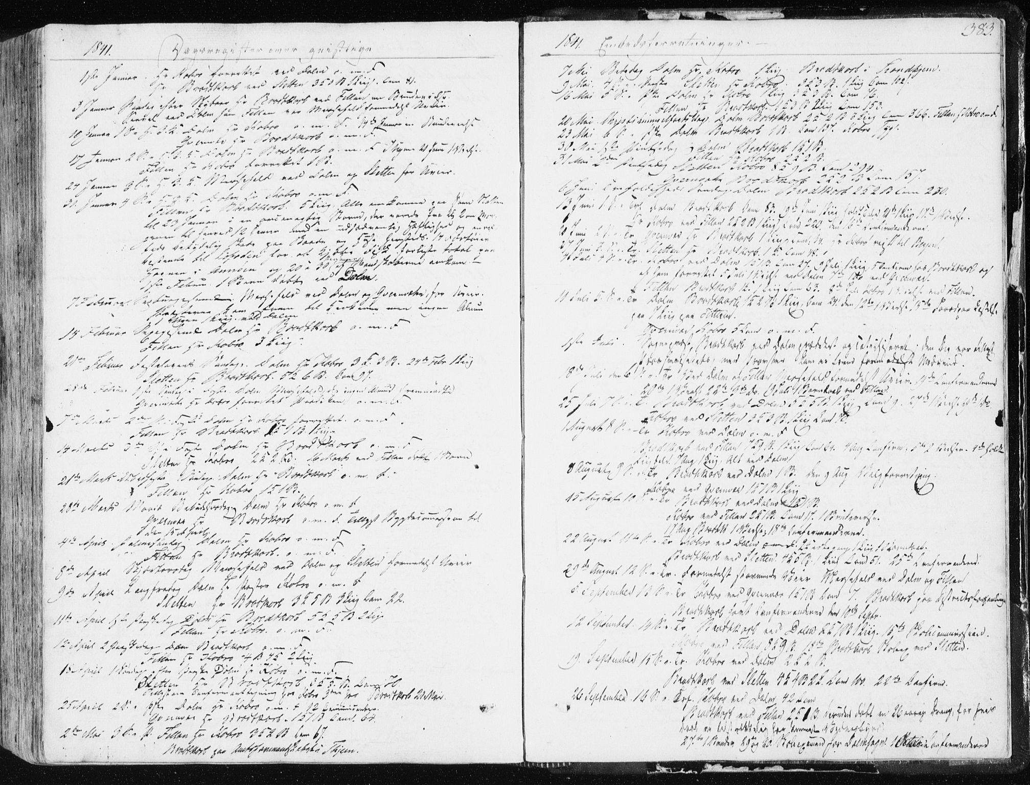 SAT, Ministerialprotokoller, klokkerbøker og fødselsregistre - Sør-Trøndelag, 634/L0528: Ministerialbok nr. 634A04, 1827-1842, s. 383