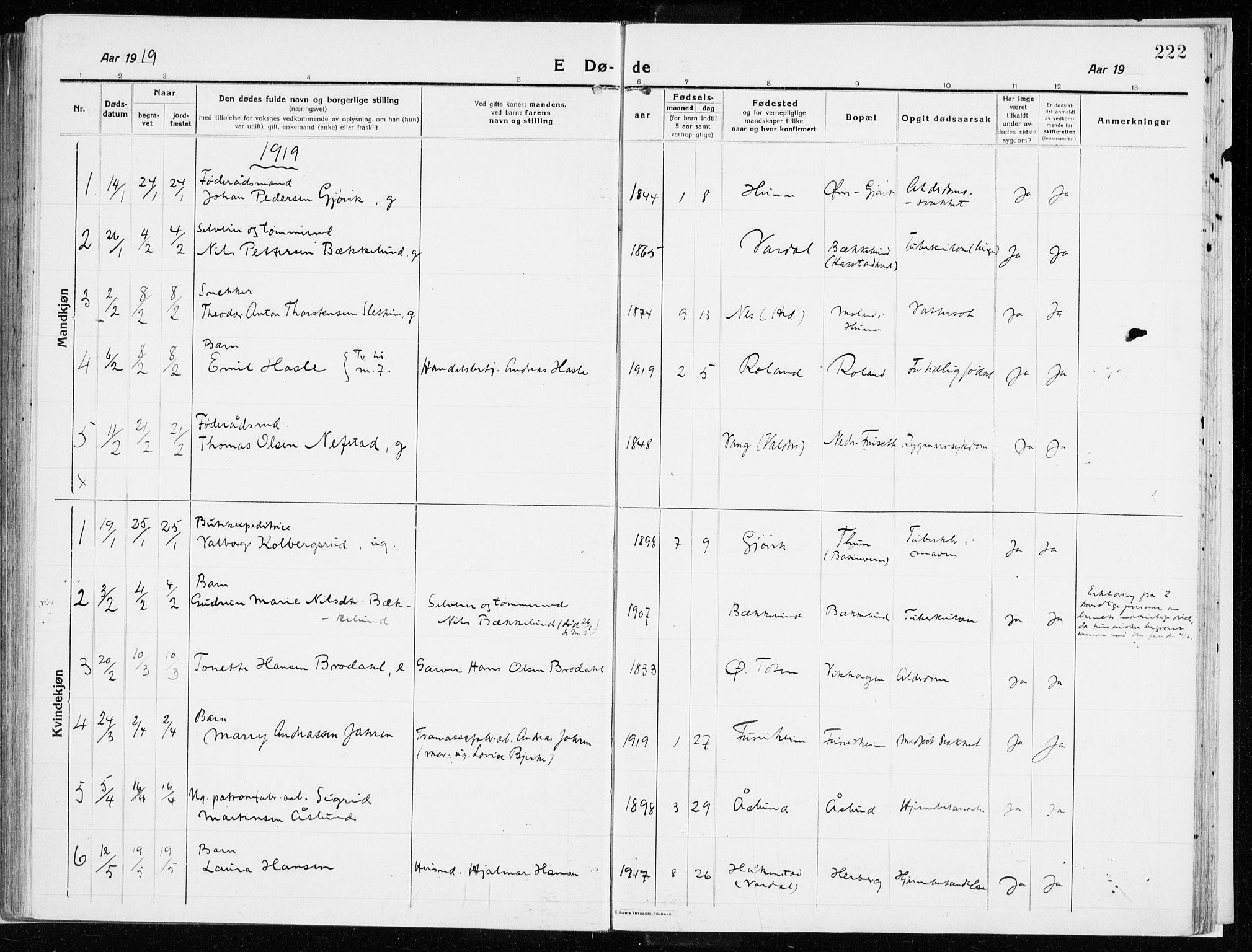 SAH, Vardal prestekontor, H/Ha/Haa/L0017: Ministerialbok nr. 17, 1915-1929, s. 222
