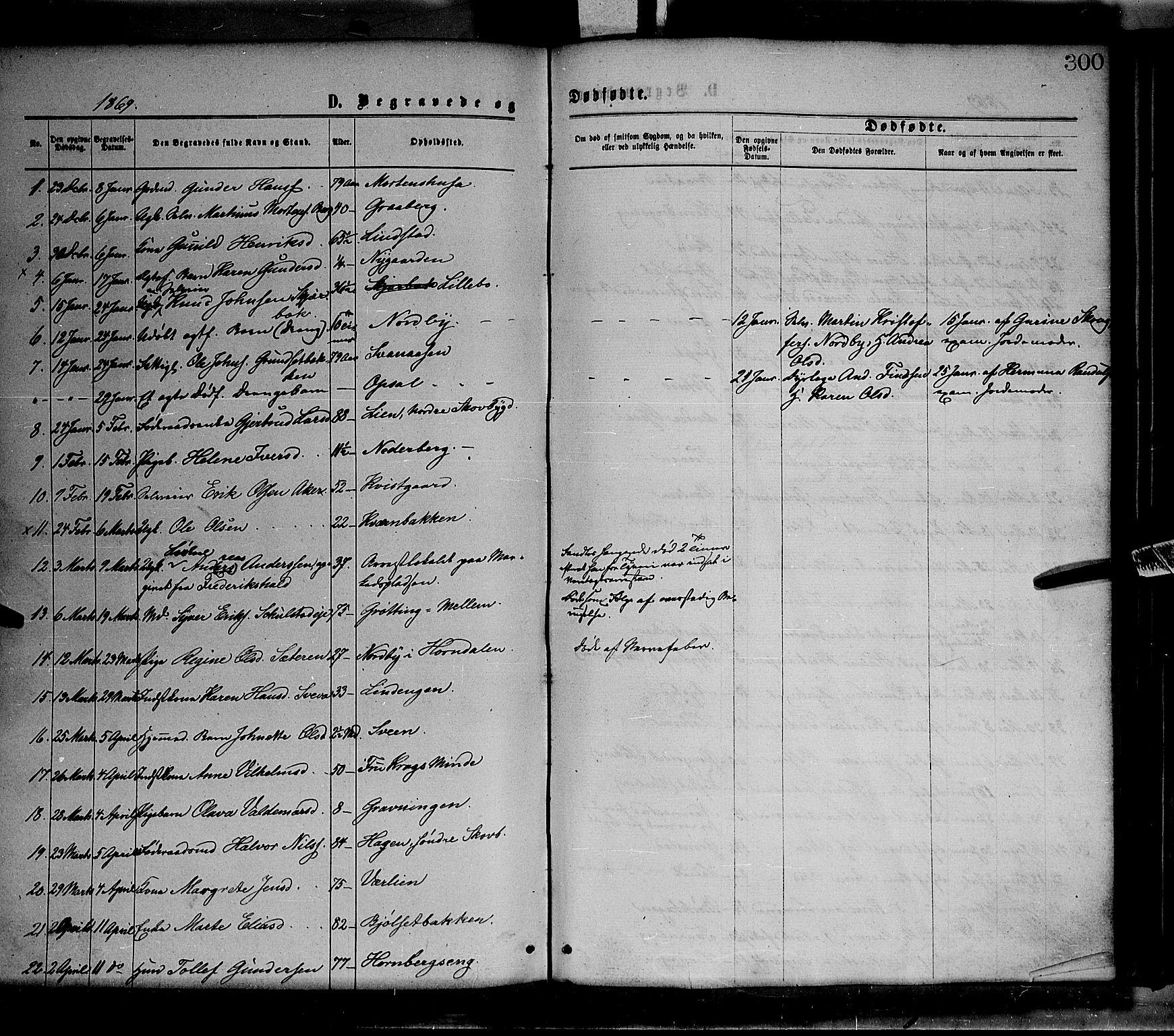 SAH, Elverum prestekontor, H/Ha/Haa/L0011: Ministerialbok nr. 11, 1869-1879, s. 300