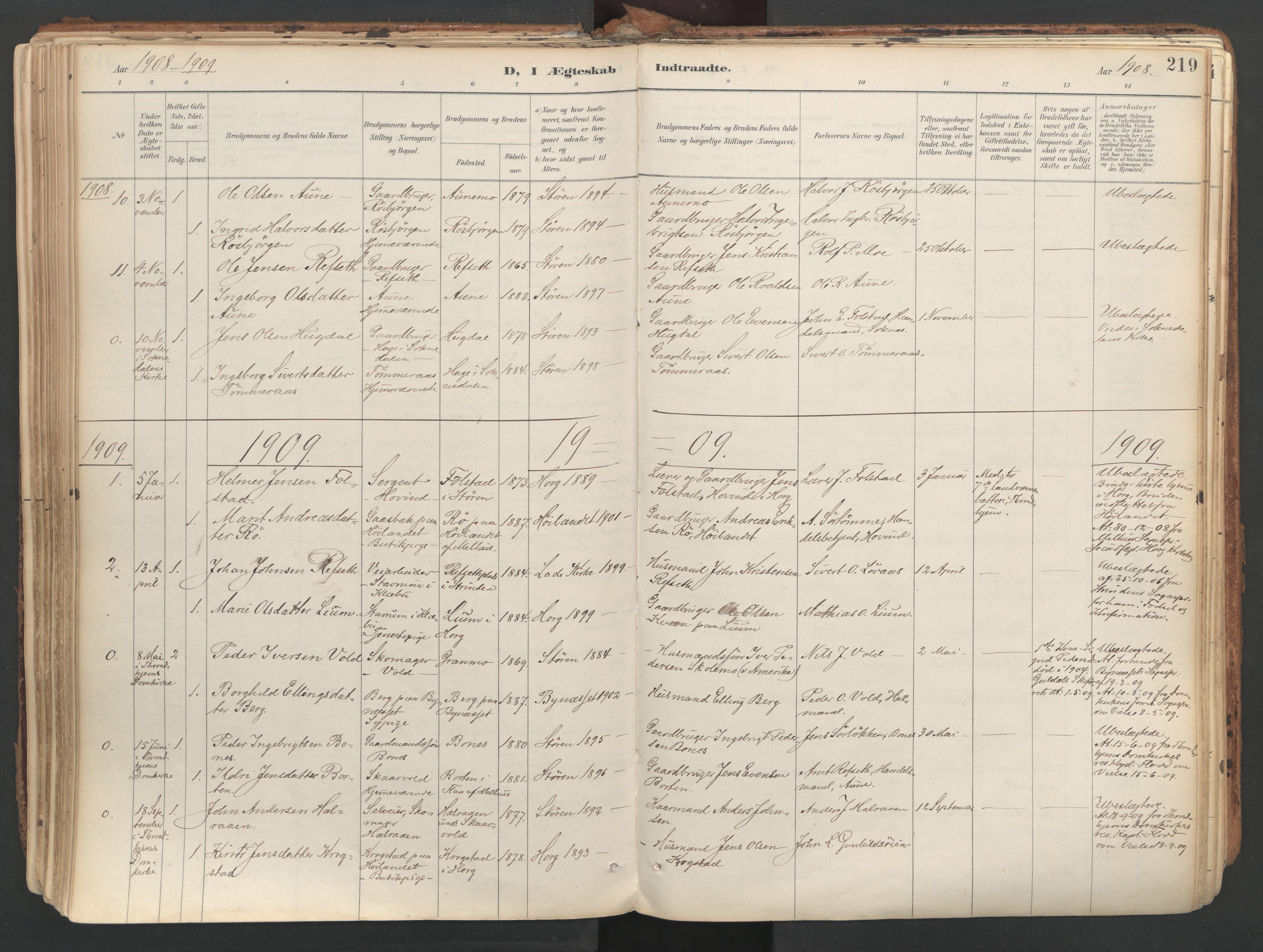 SAT, Ministerialprotokoller, klokkerbøker og fødselsregistre - Sør-Trøndelag, 687/L1004: Ministerialbok nr. 687A10, 1891-1923, s. 219