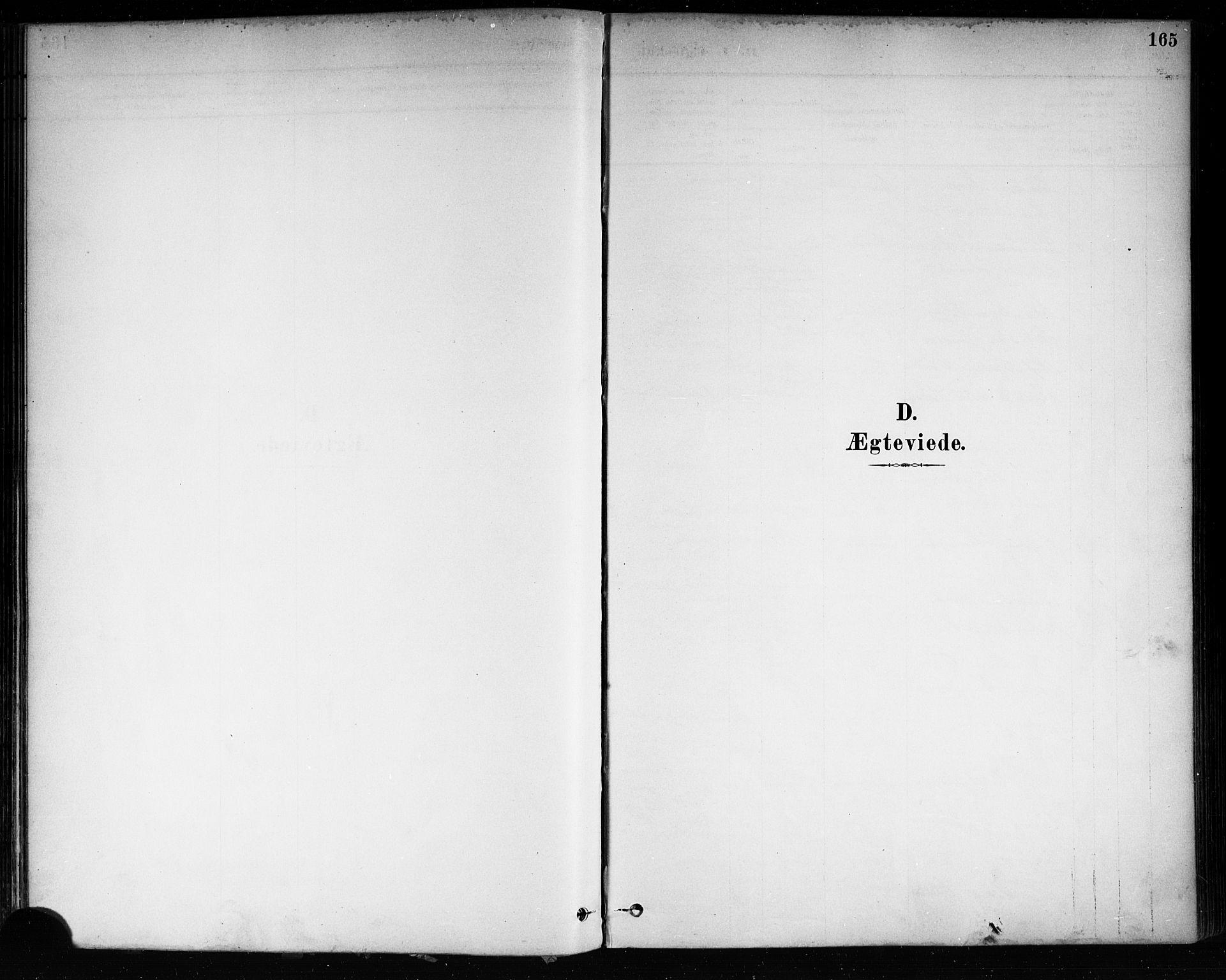 SAKO, Brevik kirkebøker, F/Fa/L0007: Ministerialbok nr. 7, 1882-1900, s. 165