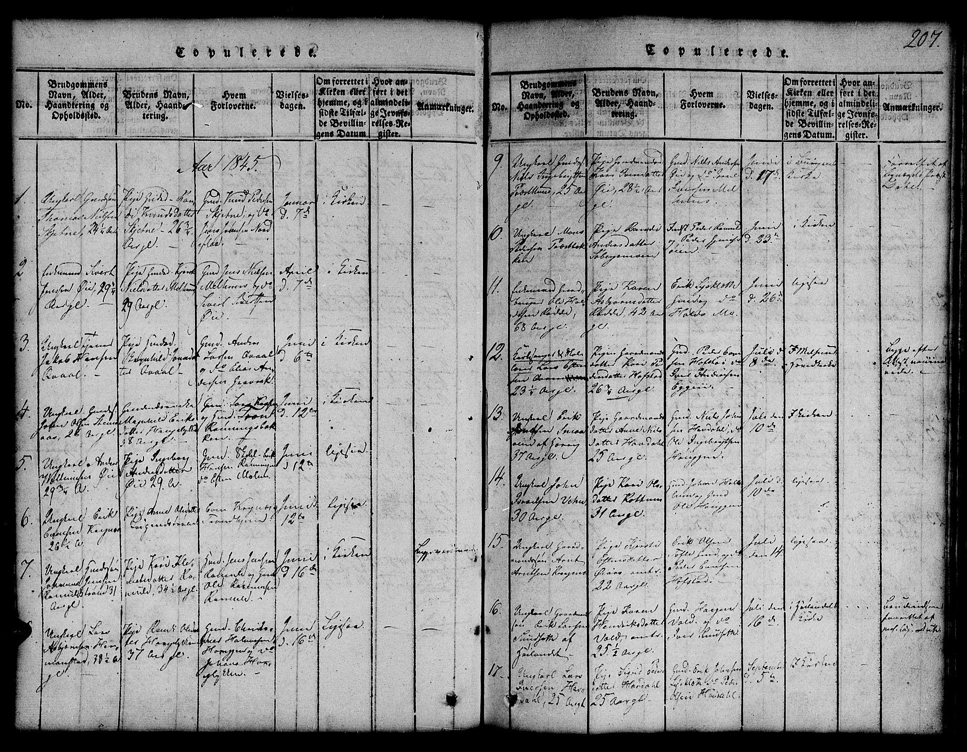 SAT, Ministerialprotokoller, klokkerbøker og fødselsregistre - Sør-Trøndelag, 691/L1092: Klokkerbok nr. 691C03, 1816-1852, s. 207