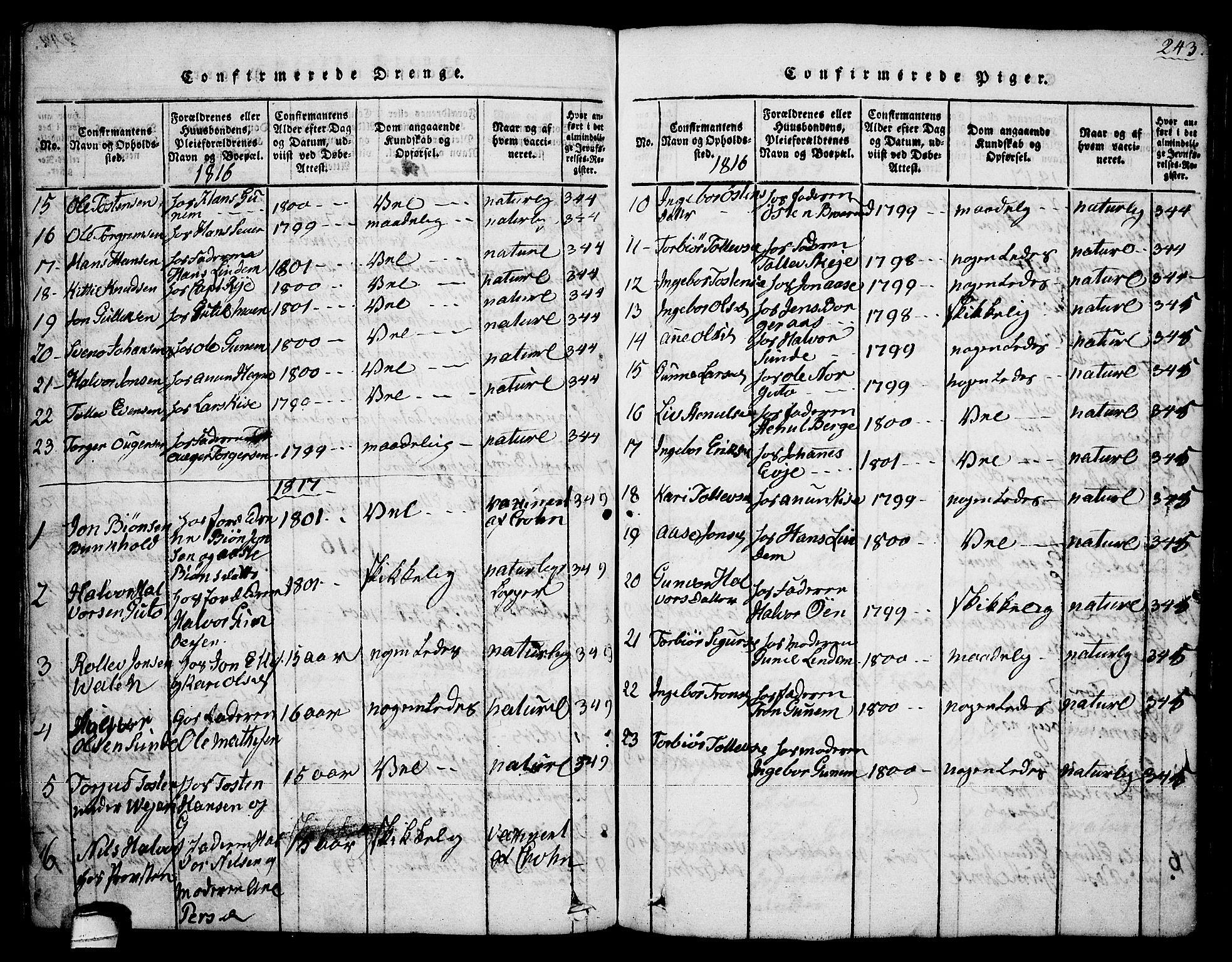 SAKO, Sauherad kirkebøker, G/Ga/L0001: Klokkerbok nr. I 1, 1815-1827, s. 243