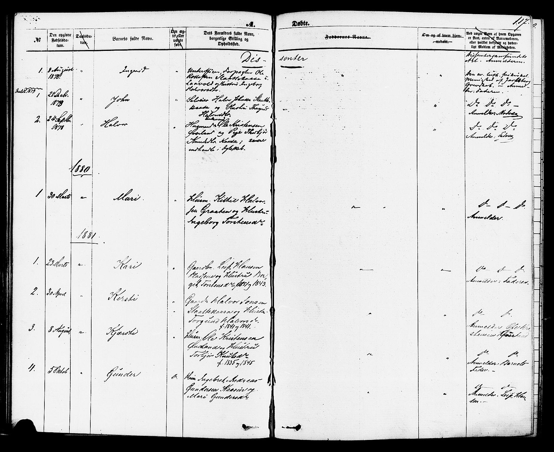 SAKO, Sauherad kirkebøker, F/Fa/L0008: Ministerialbok nr. I 8, 1873-1886, s. 117