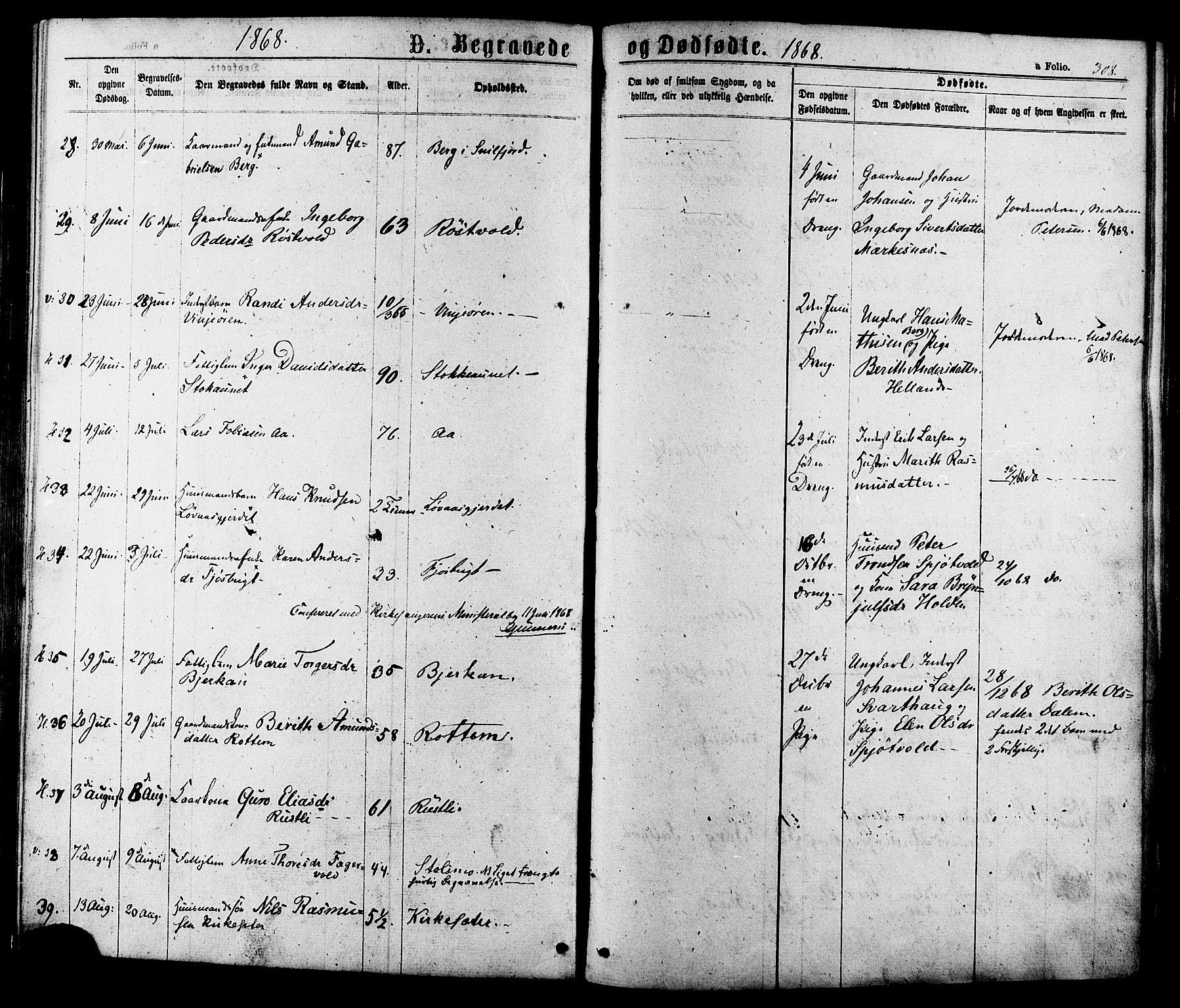 SAT, Ministerialprotokoller, klokkerbøker og fødselsregistre - Sør-Trøndelag, 630/L0495: Ministerialbok nr. 630A08, 1868-1878, s. 308