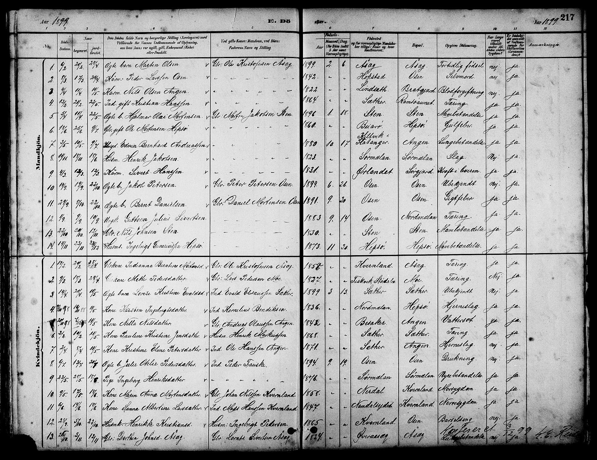 SAT, Ministerialprotokoller, klokkerbøker og fødselsregistre - Sør-Trøndelag, 658/L0726: Klokkerbok nr. 658C02, 1883-1908, s. 217