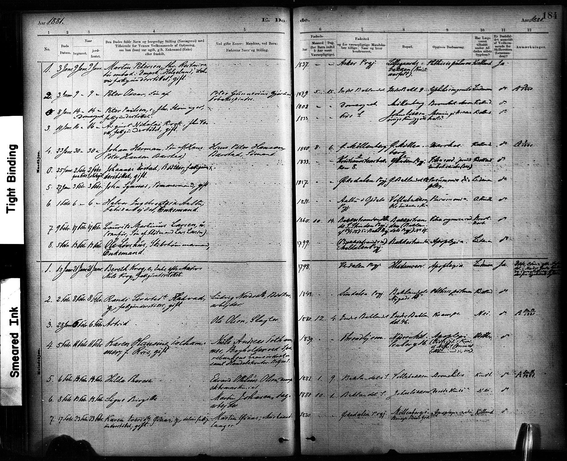 SAT, Ministerialprotokoller, klokkerbøker og fødselsregistre - Sør-Trøndelag, 604/L0189: Ministerialbok nr. 604A10, 1878-1892, s. 184
