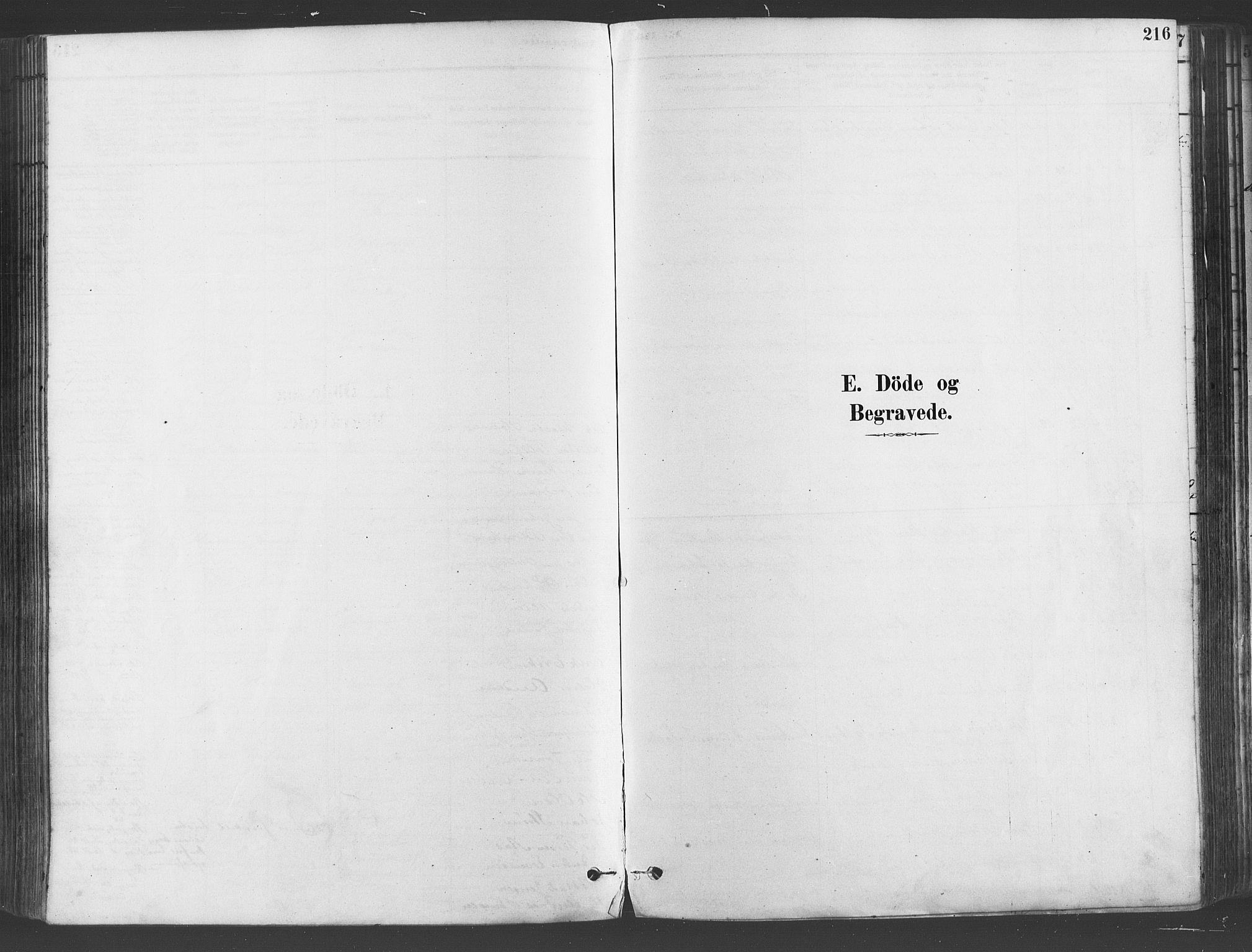 SAO, Gamlebyen prestekontor Kirkebøker, F/Fa/L0006: Ministerialbok nr. 6, 1881-1890, s. 216