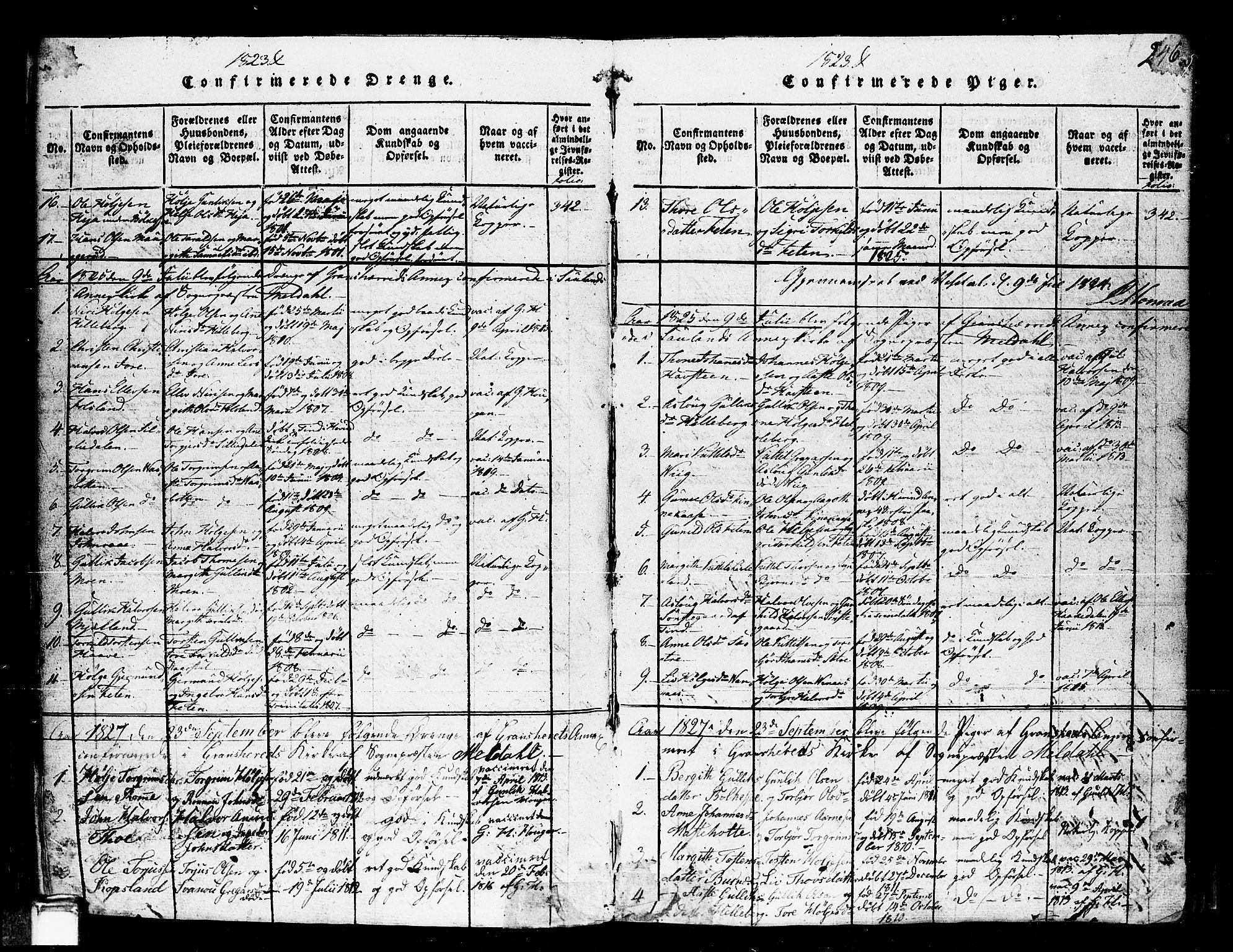 SAKO, Gransherad kirkebøker, F/Fa/L0001: Ministerialbok nr. I 1, 1815-1843, s. 246