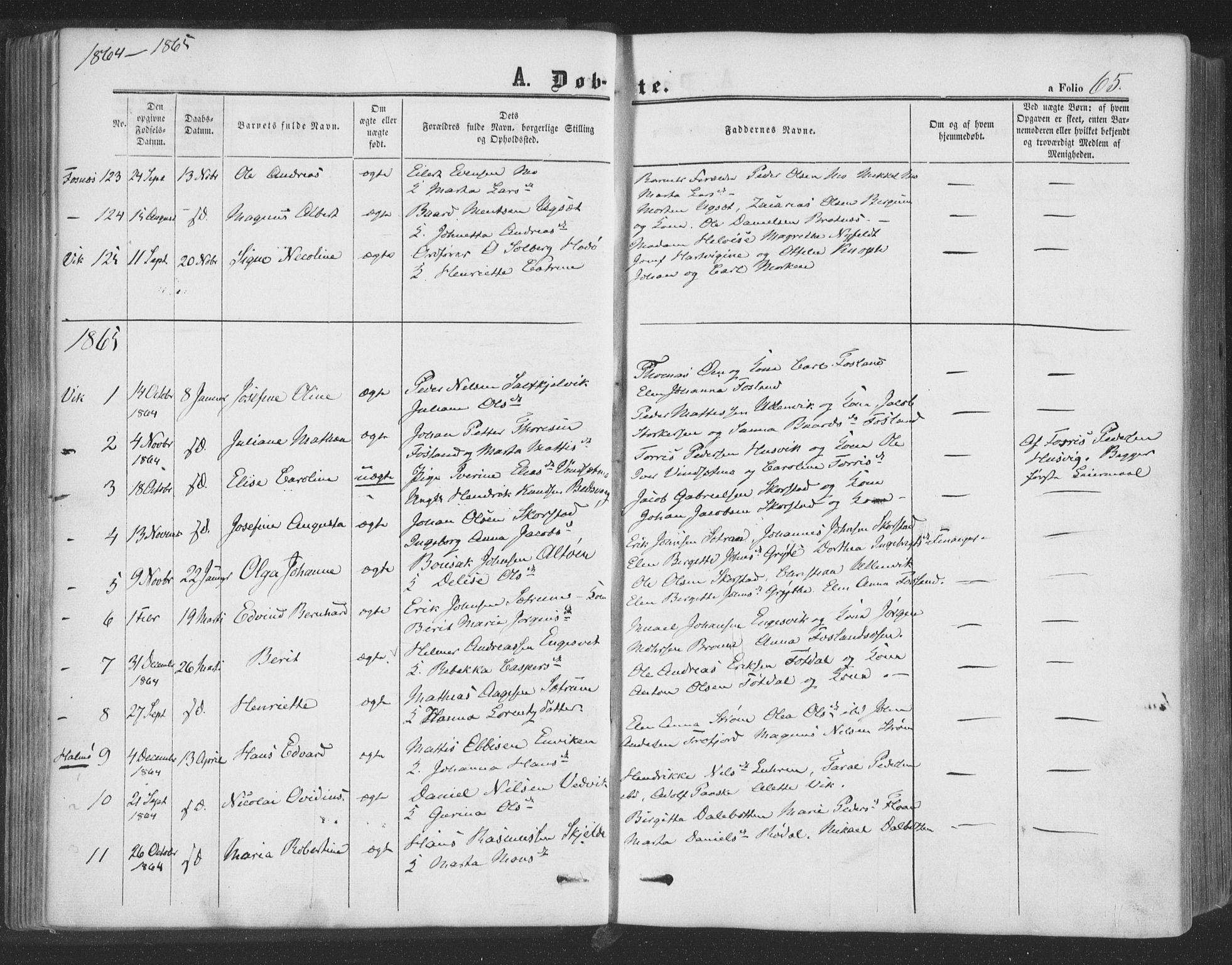 SAT, Ministerialprotokoller, klokkerbøker og fødselsregistre - Nord-Trøndelag, 773/L0615: Ministerialbok nr. 773A06, 1857-1870, s. 65