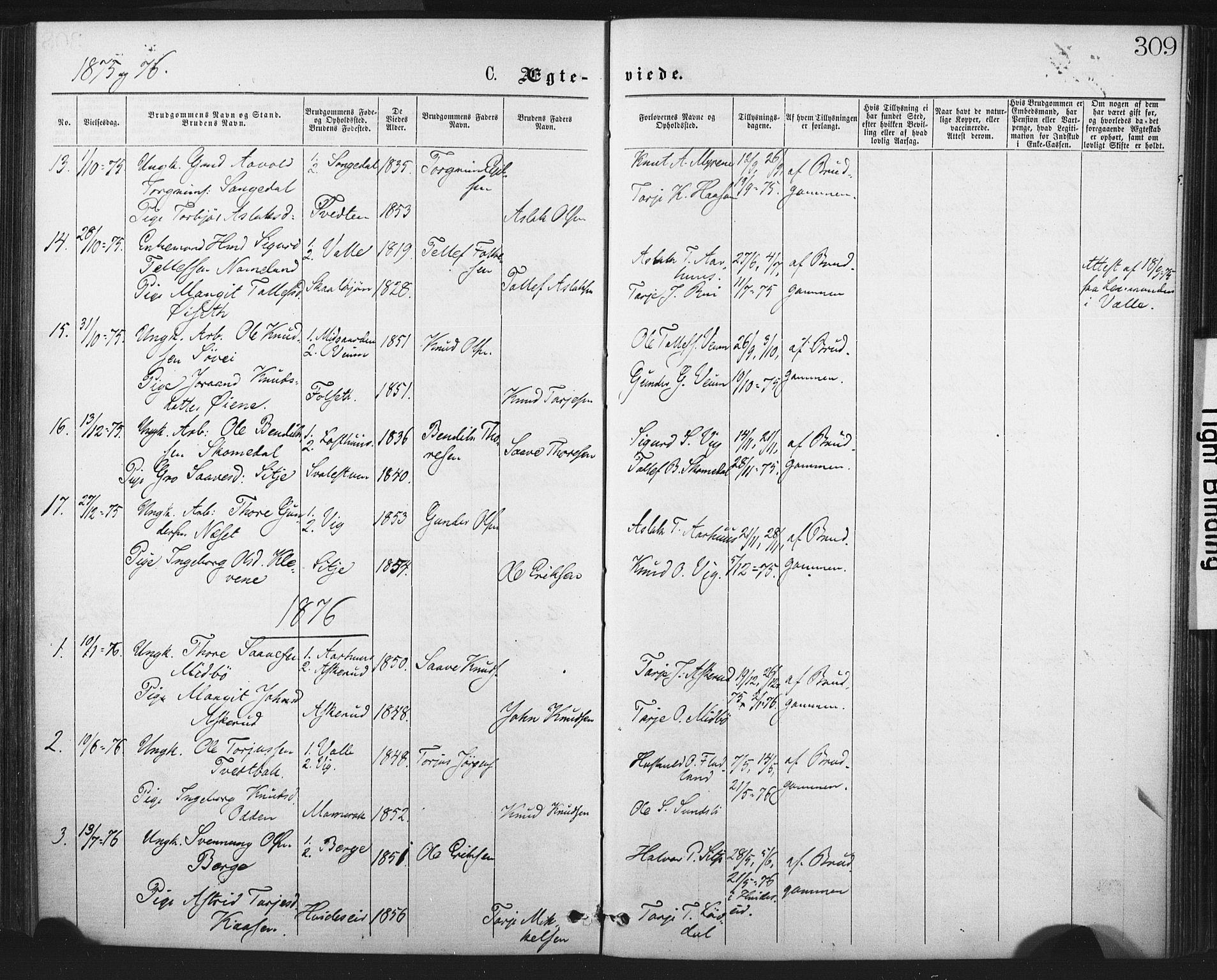 SAKO, Fyresdal kirkebøker, F/Fa/L0006: Ministerialbok nr. I 6, 1872-1886, s. 309