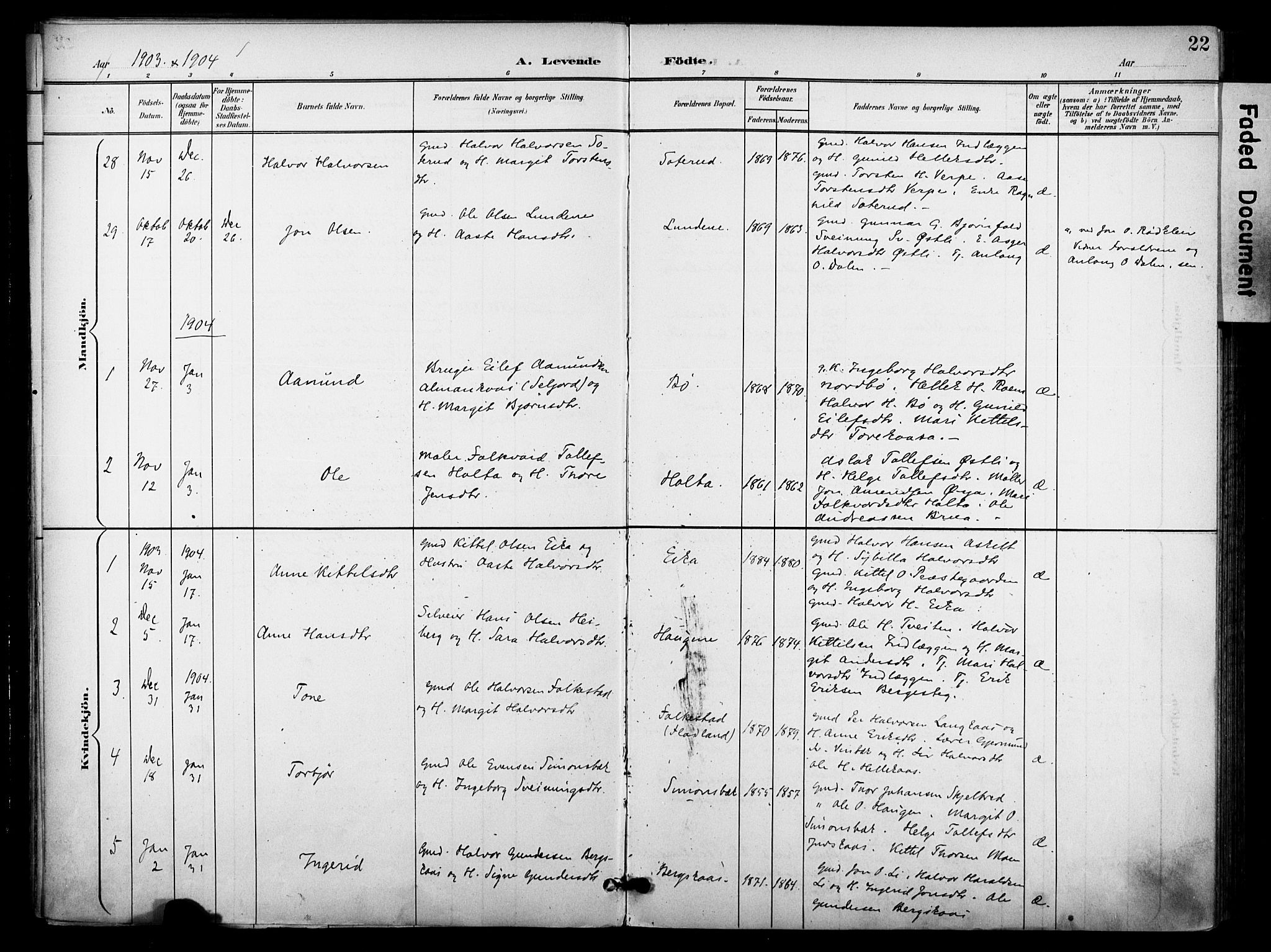 SAKO, Bø kirkebøker, F/Fa/L0012: Ministerialbok nr. 12, 1900-1908, s. 22