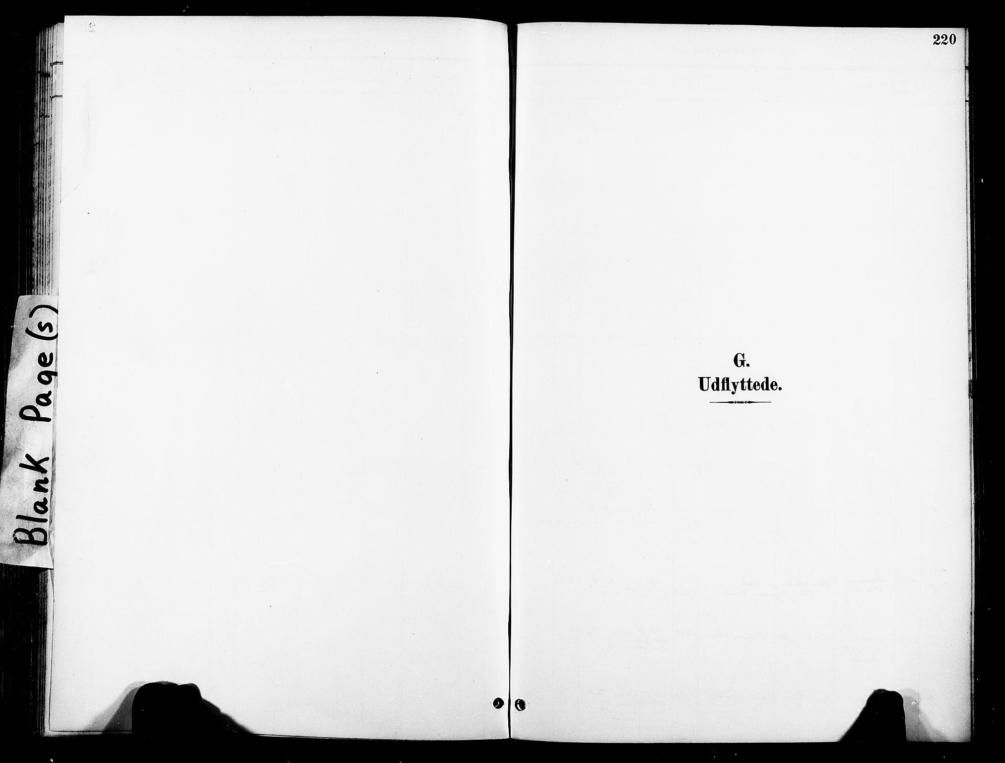 SAT, Ministerialprotokoller, klokkerbøker og fødselsregistre - Nord-Trøndelag, 739/L0372: Ministerialbok nr. 739A04, 1895-1903, s. 220