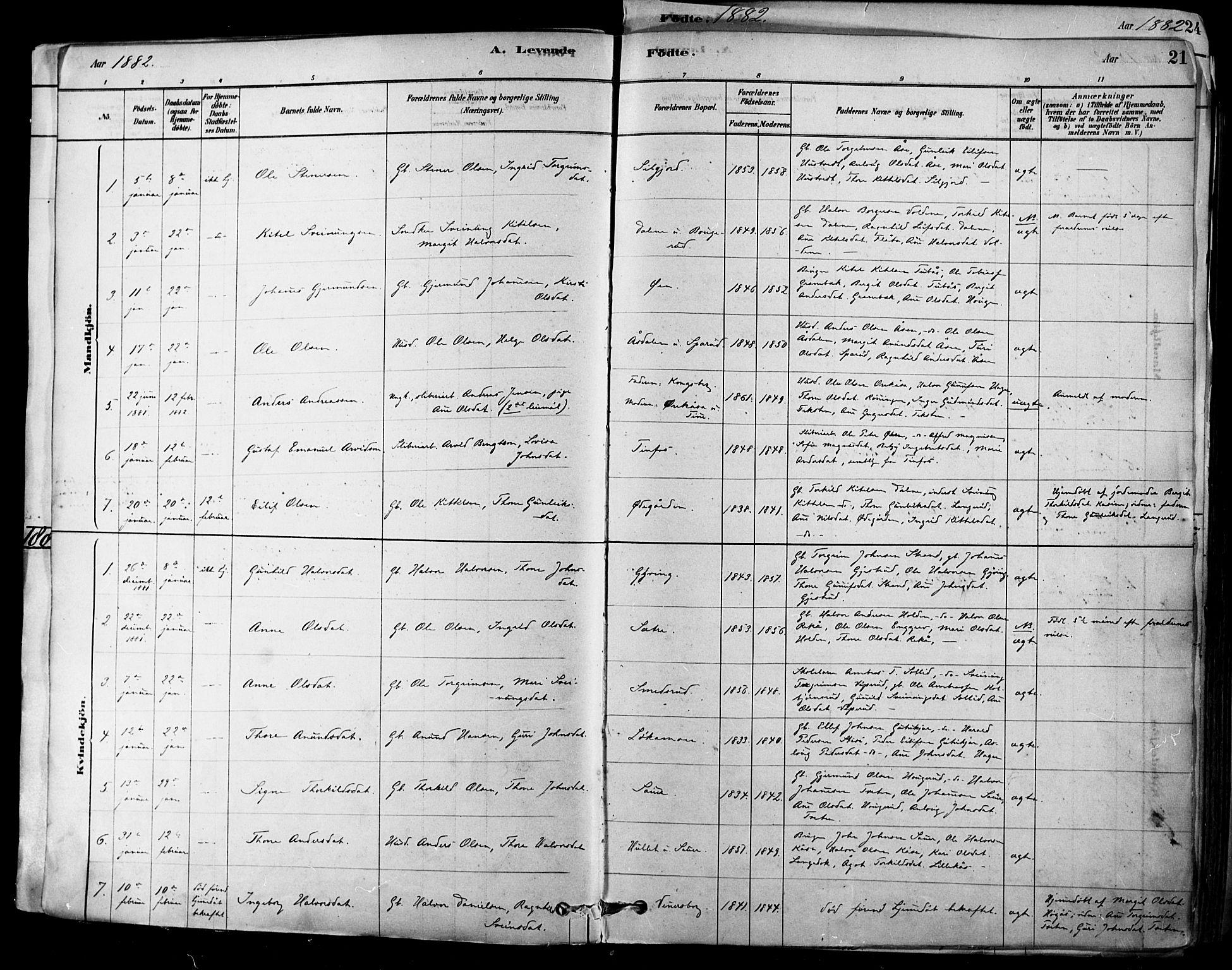 SAKO, Heddal kirkebøker, F/Fa/L0008: Ministerialbok nr. I 8, 1878-1903, s. 21