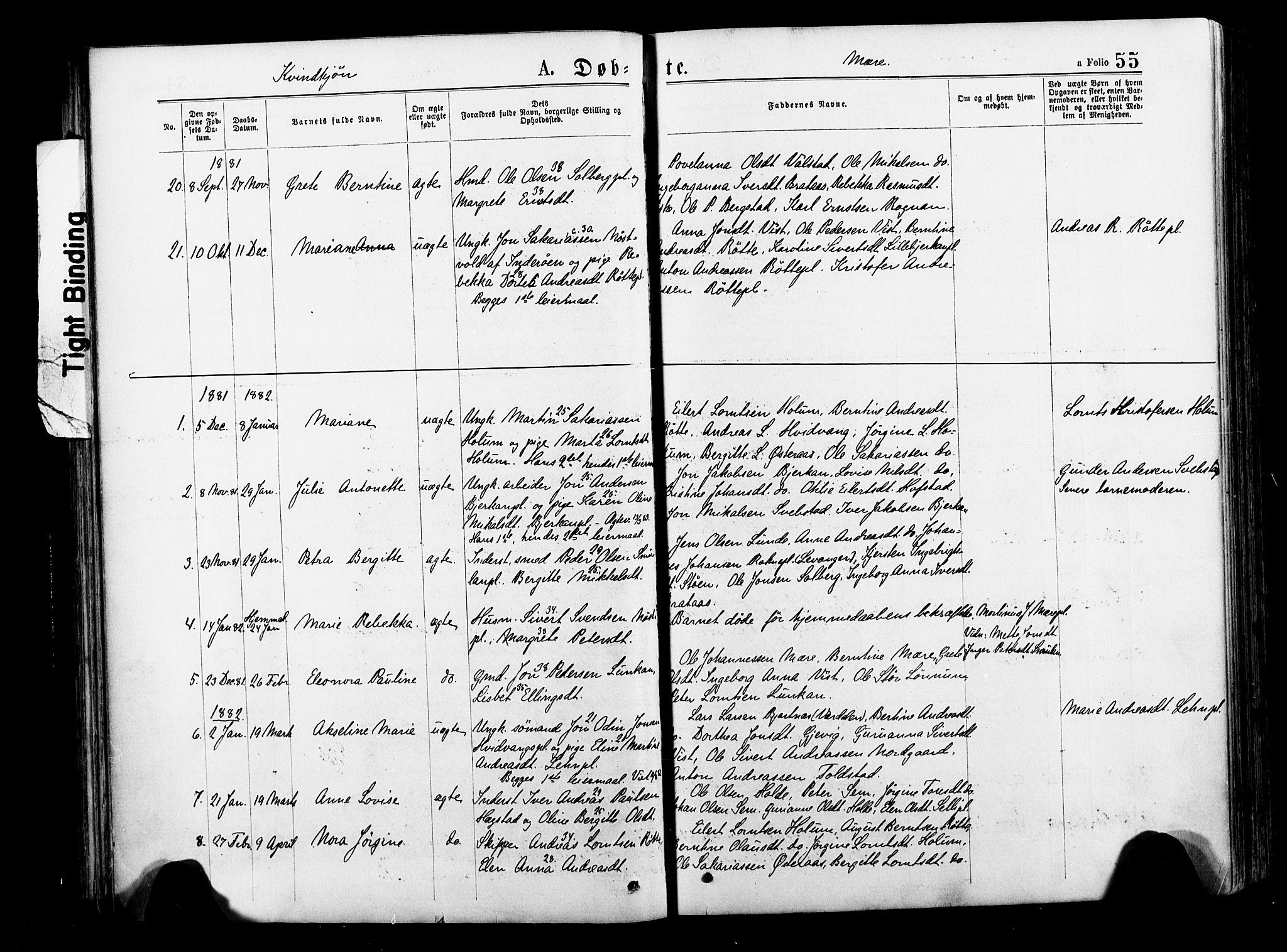 SAT, Ministerialprotokoller, klokkerbøker og fødselsregistre - Nord-Trøndelag, 735/L0348: Ministerialbok nr. 735A09 /1, 1873-1883, s. 55