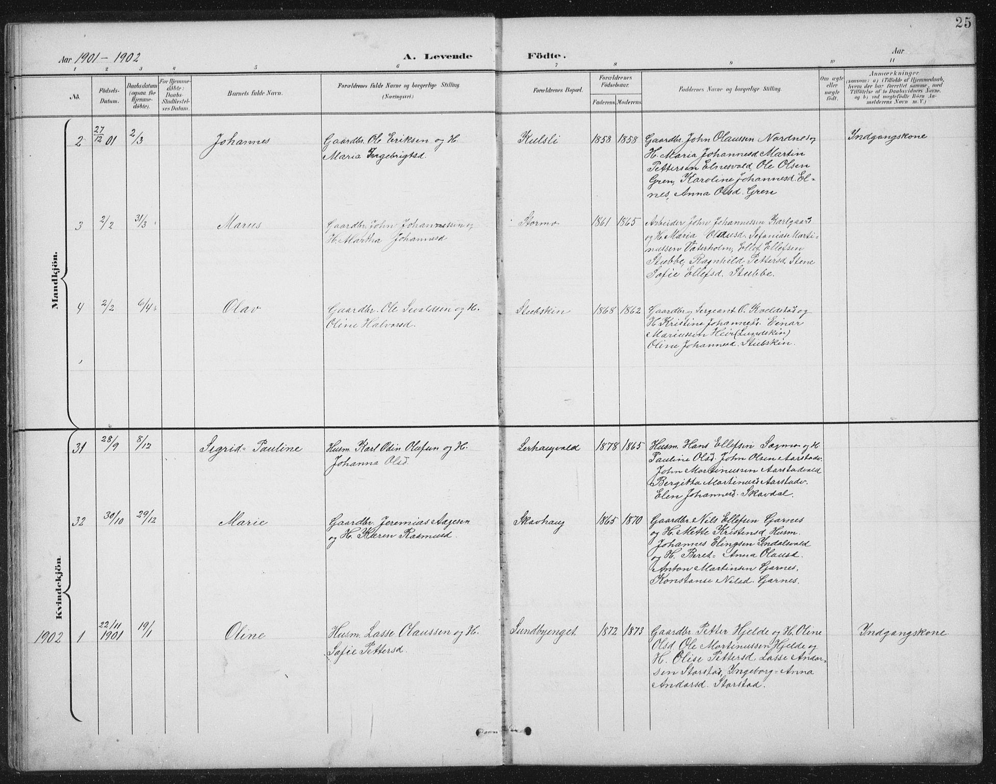 SAT, Ministerialprotokoller, klokkerbøker og fødselsregistre - Nord-Trøndelag, 724/L0269: Klokkerbok nr. 724C05, 1899-1920, s. 25