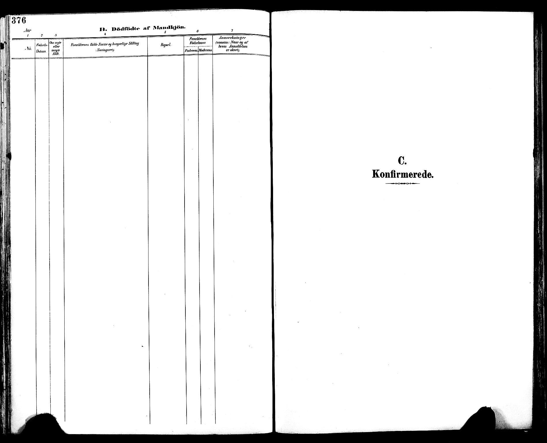 SAT, Ministerialprotokoller, klokkerbøker og fødselsregistre - Sør-Trøndelag, 604/L0197: Ministerialbok nr. 604A18, 1893-1900, s. 376