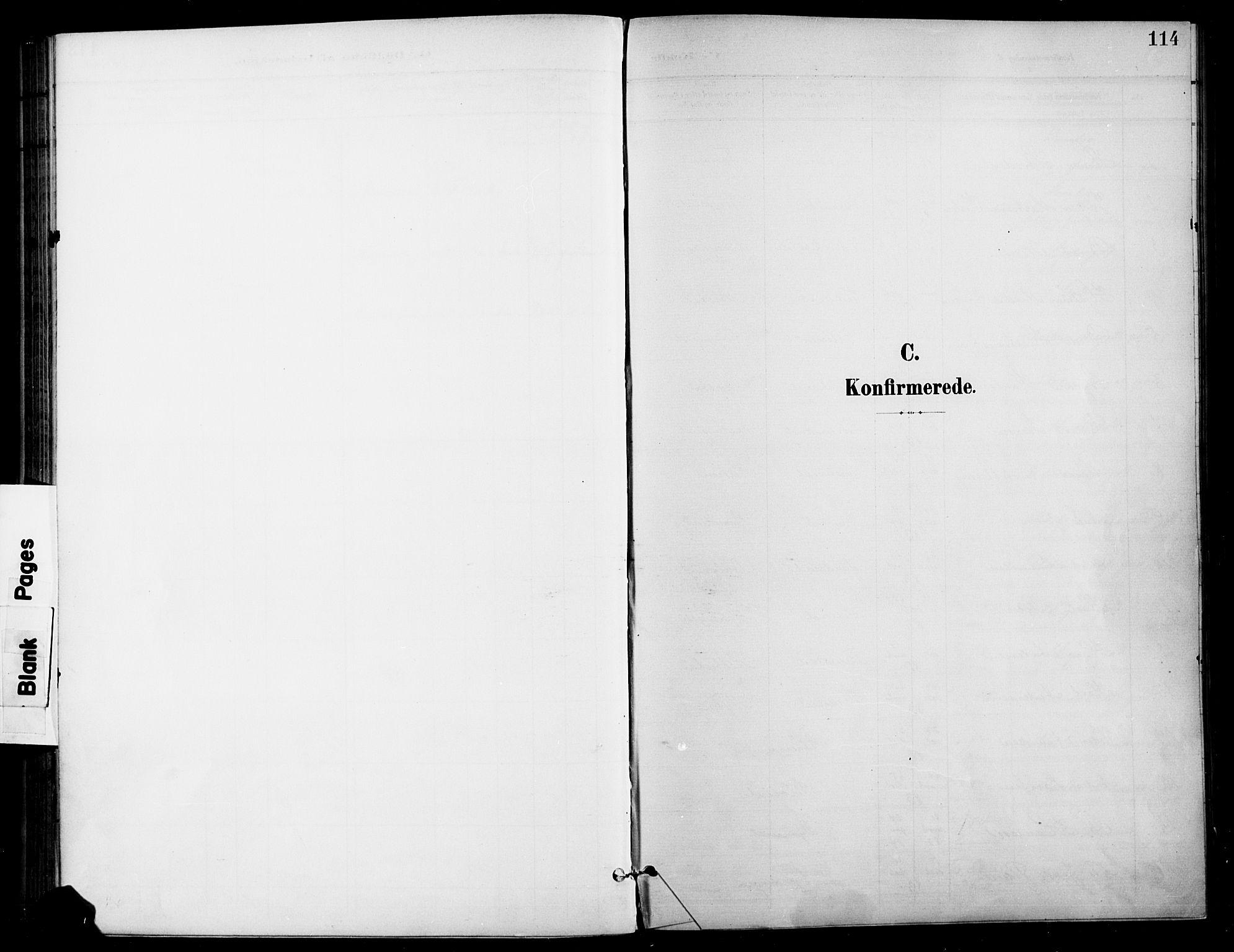 SAH, Gran prestekontor, Ministerialbok nr. 19, 1898-1907, s. 114
