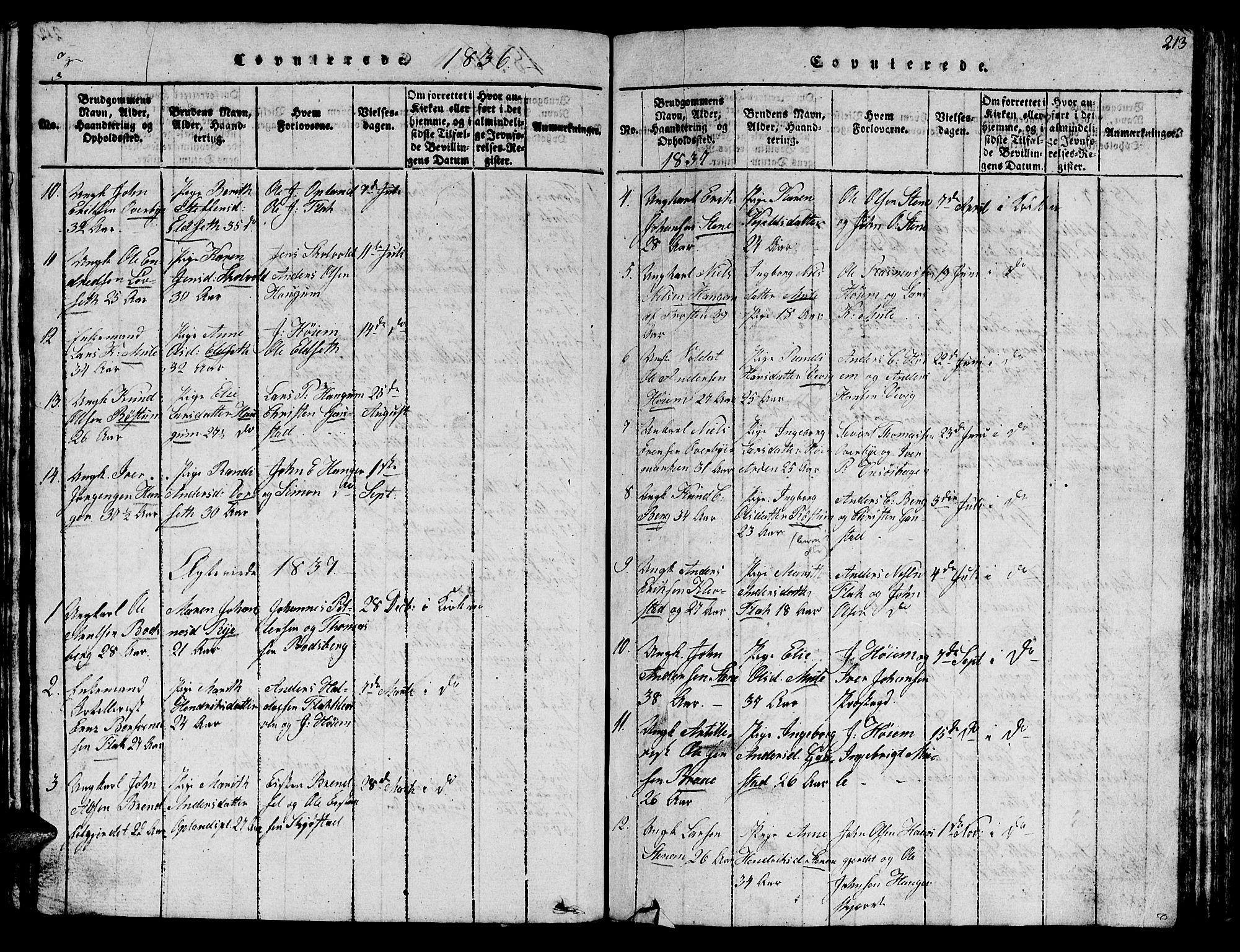 SAT, Ministerialprotokoller, klokkerbøker og fødselsregistre - Sør-Trøndelag, 612/L0385: Klokkerbok nr. 612C01, 1816-1845, s. 213