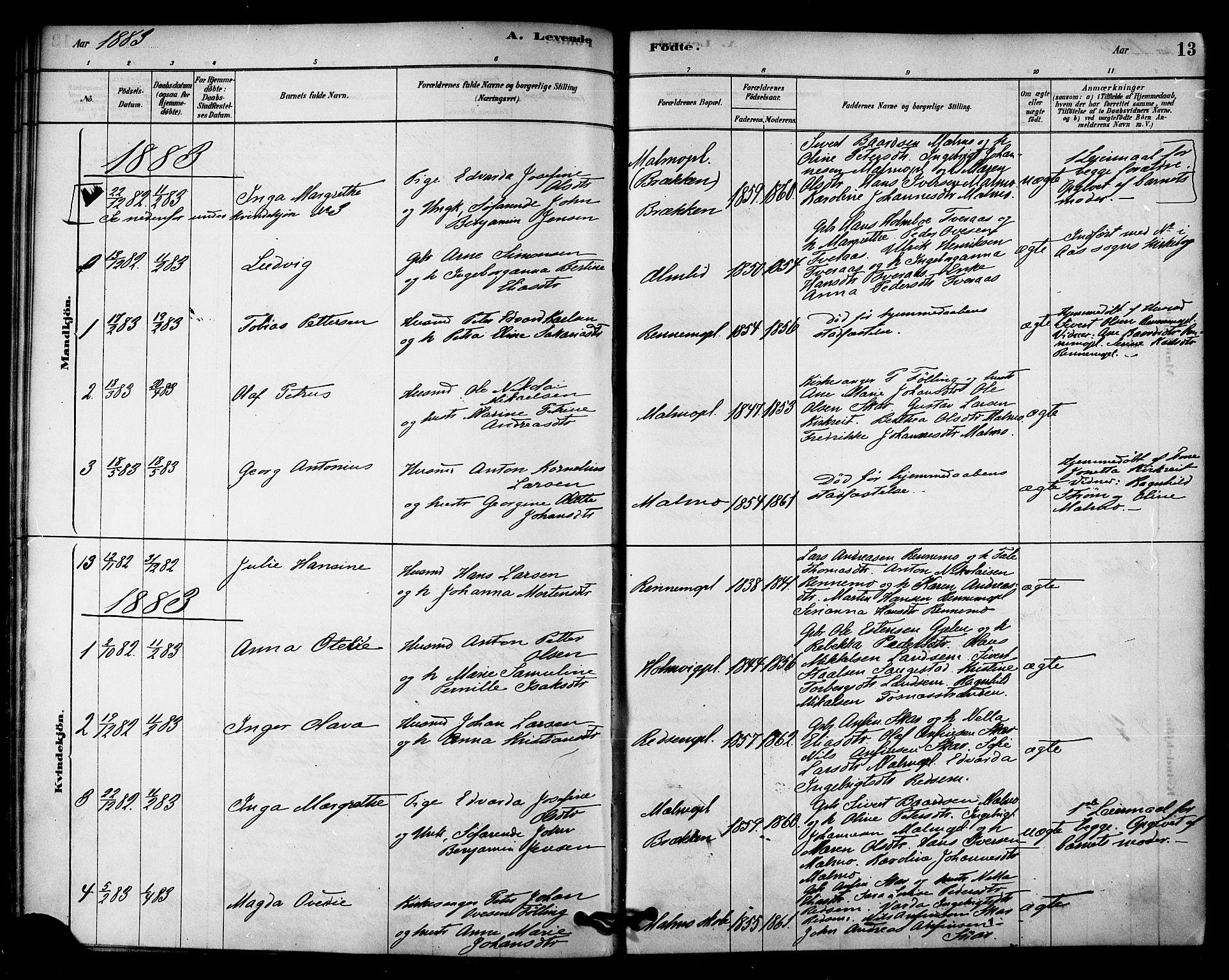 SAT, Ministerialprotokoller, klokkerbøker og fødselsregistre - Nord-Trøndelag, 745/L0429: Ministerialbok nr. 745A01, 1878-1894, s. 13