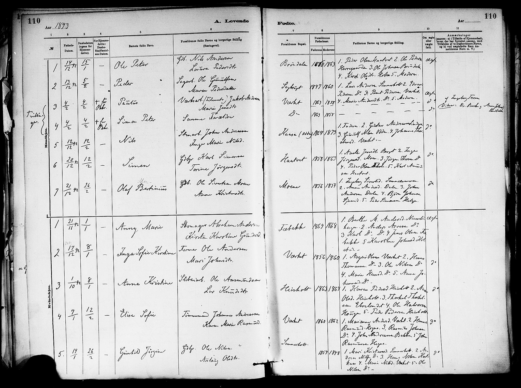 SAKO, Holla kirkebøker, F/Fa/L0008: Ministerialbok nr. 8, 1882-1897, s. 110