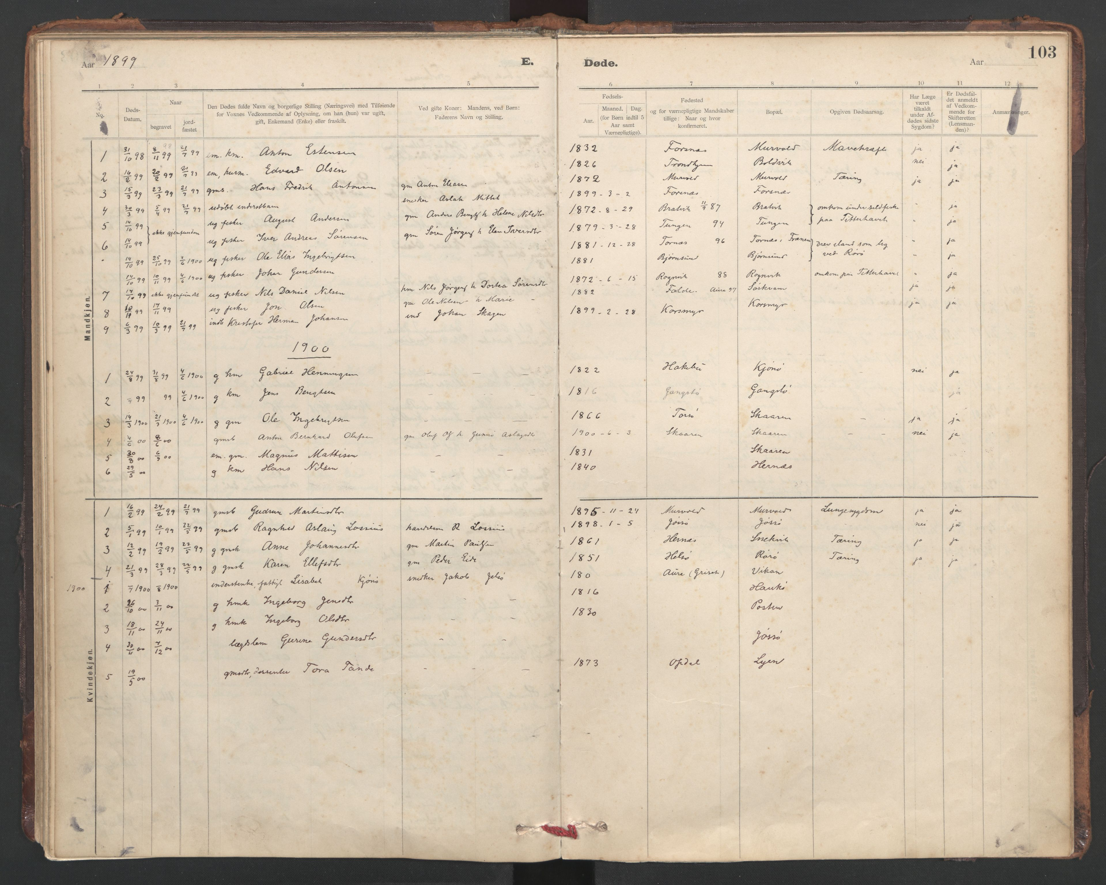 SAT, Ministerialprotokoller, klokkerbøker og fødselsregistre - Sør-Trøndelag, 635/L0552: Ministerialbok nr. 635A02, 1899-1919, s. 103