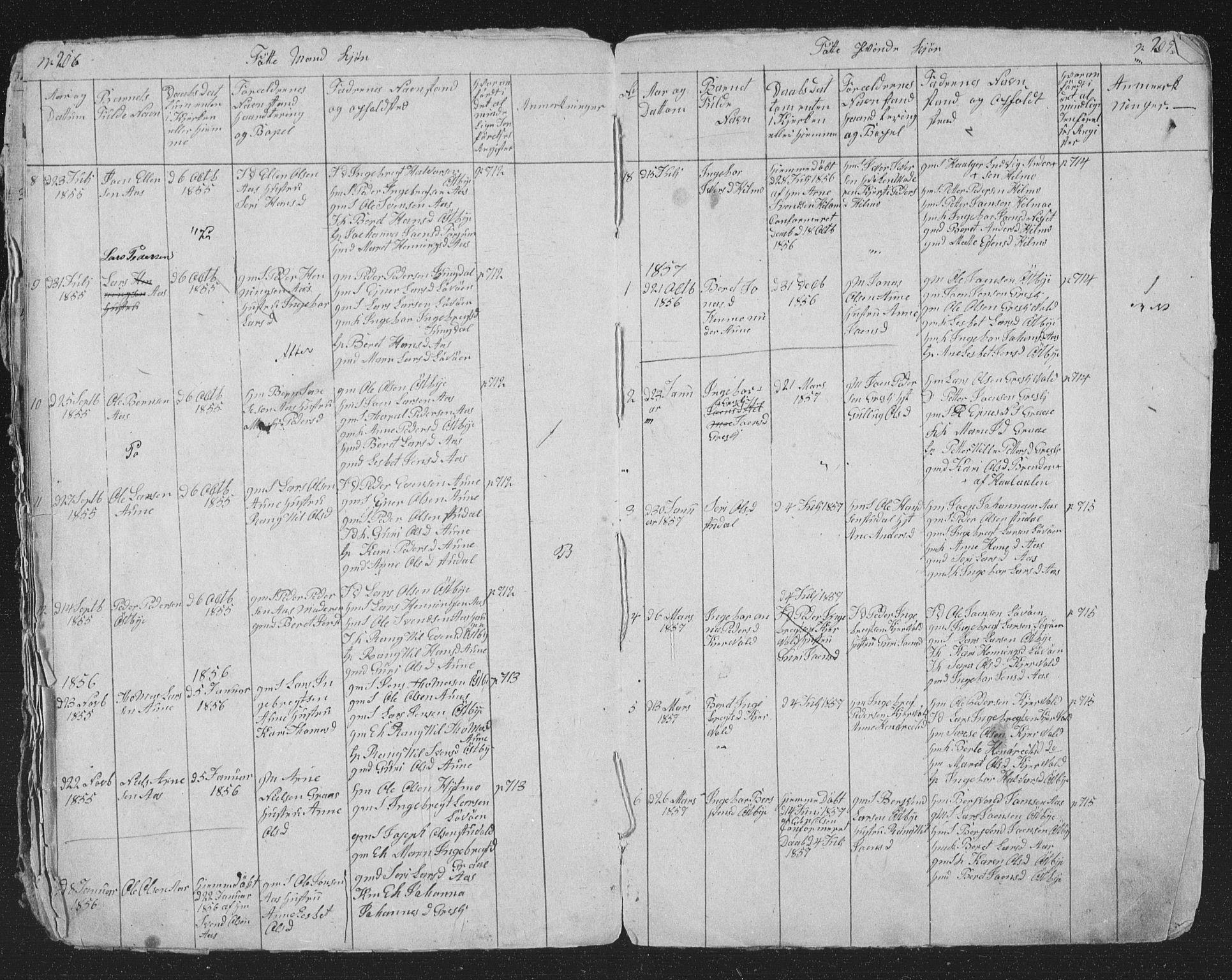 SAT, Ministerialprotokoller, klokkerbøker og fødselsregistre - Sør-Trøndelag, 698/L1165: Klokkerbok nr. 698C02, 1851-1861, s. 206-207