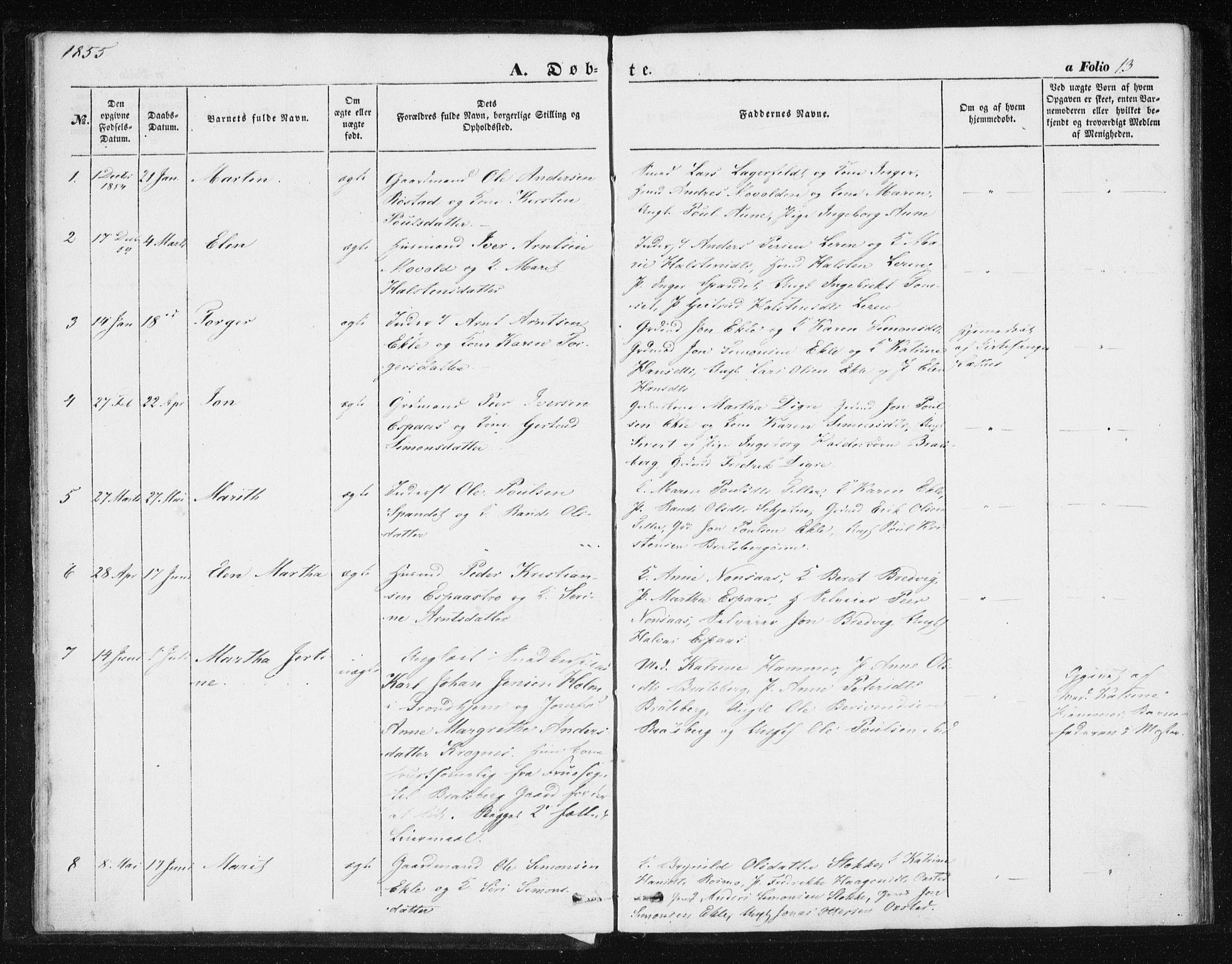 SAT, Ministerialprotokoller, klokkerbøker og fødselsregistre - Sør-Trøndelag, 608/L0332: Ministerialbok nr. 608A01, 1848-1861, s. 13