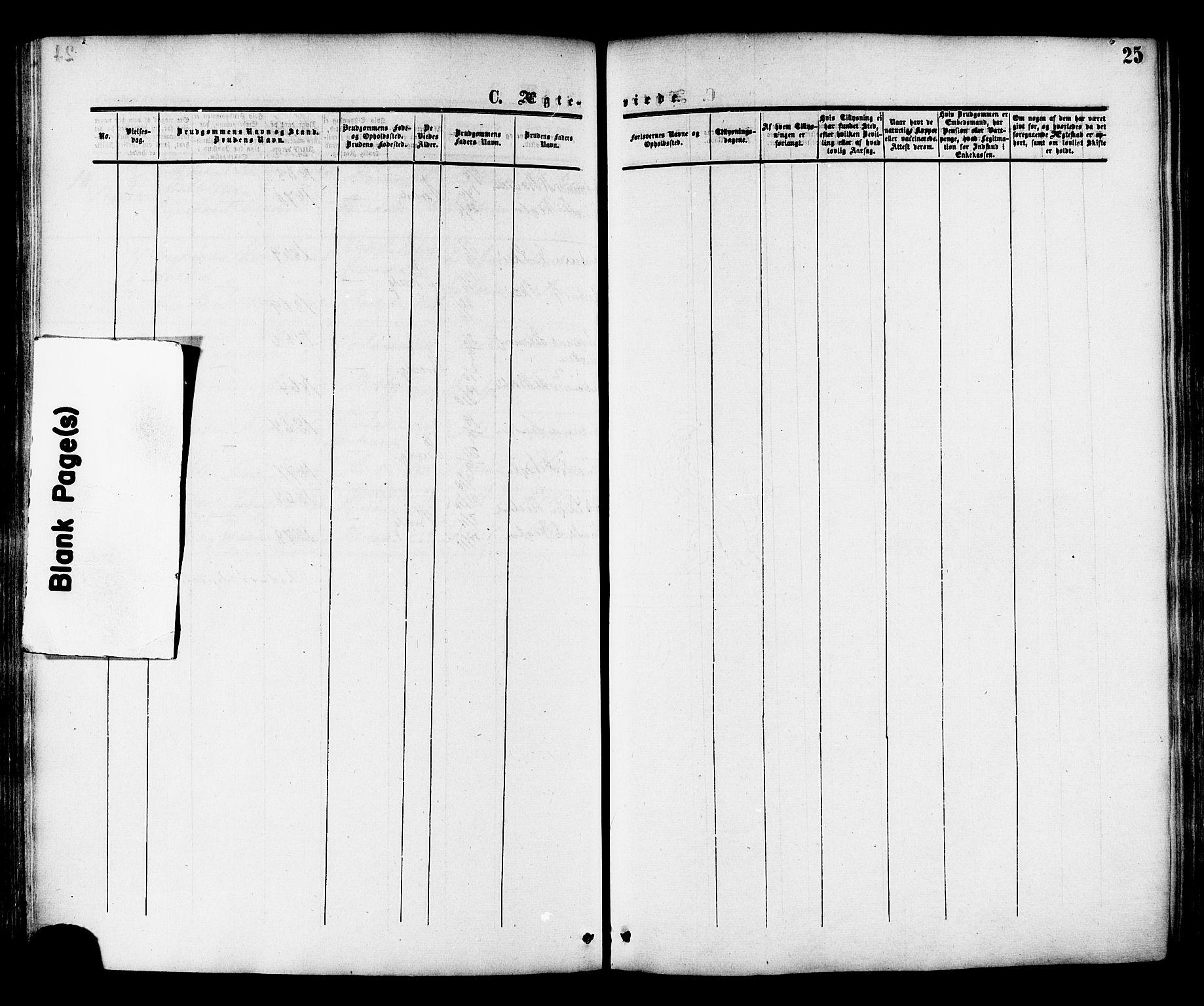 SAT, Ministerialprotokoller, klokkerbøker og fødselsregistre - Nord-Trøndelag, 764/L0553: Ministerialbok nr. 764A08, 1858-1880, s. 25
