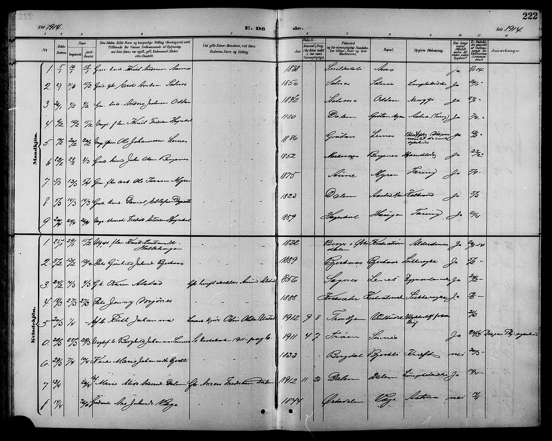 SAT, Ministerialprotokoller, klokkerbøker og fødselsregistre - Sør-Trøndelag, 630/L0505: Klokkerbok nr. 630C03, 1899-1914, s. 222