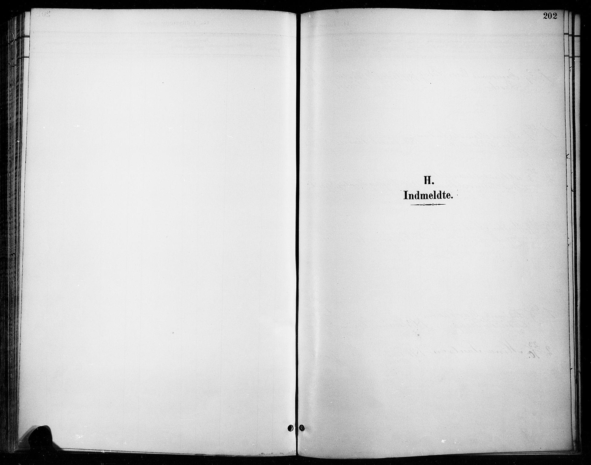 SAH, Vardal prestekontor, H/Ha/Haa/L0011: Ministerialbok nr. 11, 1891-1901, s. 202
