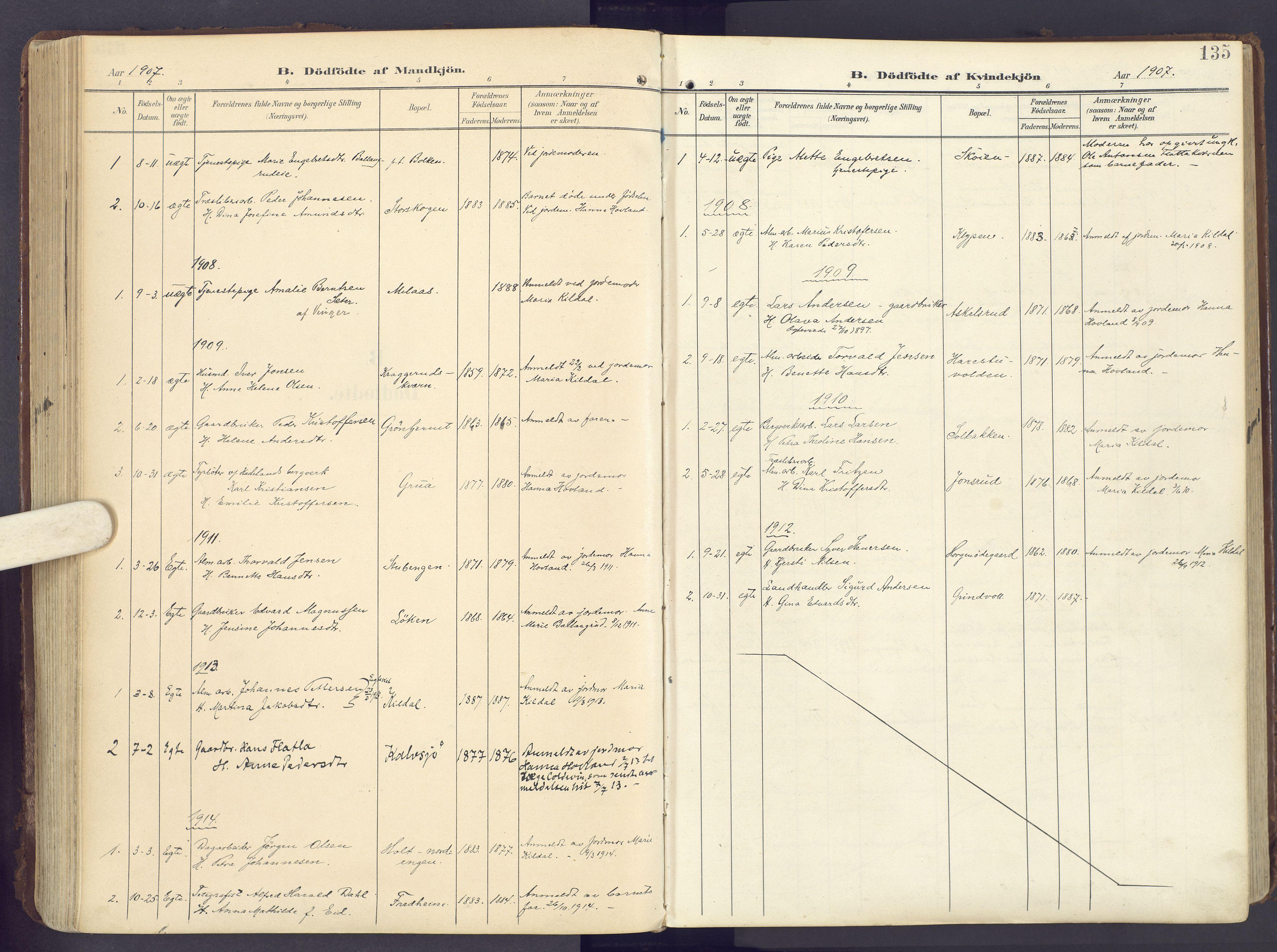 SAH, Lunner prestekontor, H/Ha/Haa/L0001: Ministerialbok nr. 1, 1907-1922, s. 135