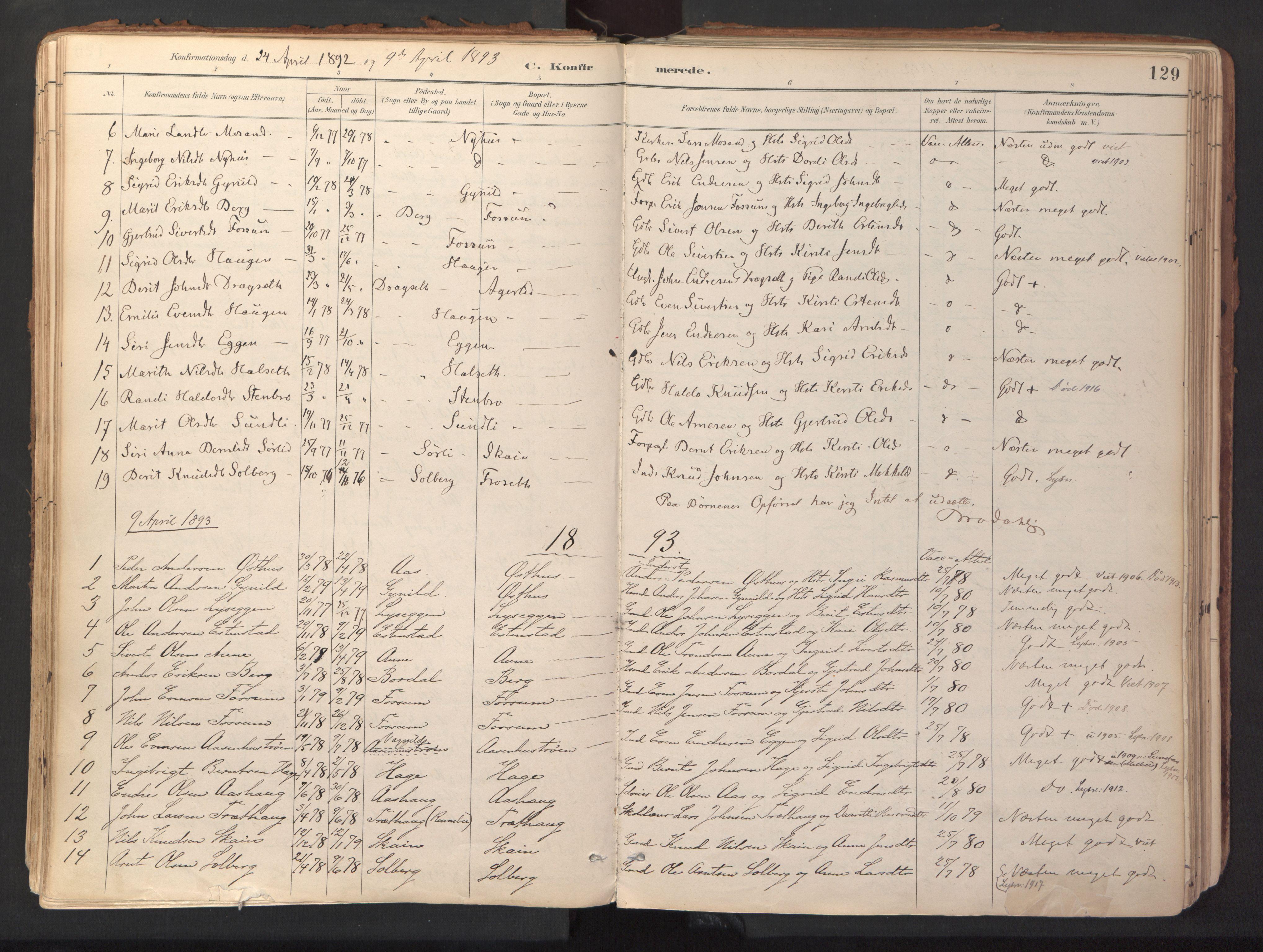 SAT, Ministerialprotokoller, klokkerbøker og fødselsregistre - Sør-Trøndelag, 689/L1041: Ministerialbok nr. 689A06, 1891-1923, s. 129
