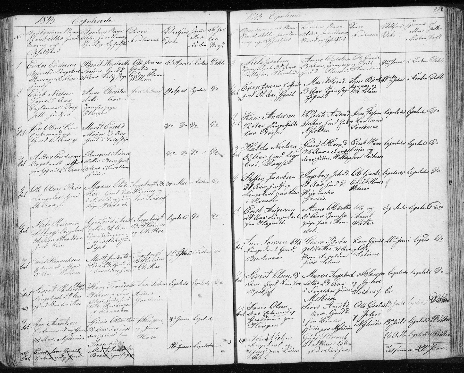 SAT, Ministerialprotokoller, klokkerbøker og fødselsregistre - Sør-Trøndelag, 689/L1043: Klokkerbok nr. 689C02, 1816-1892, s. 216