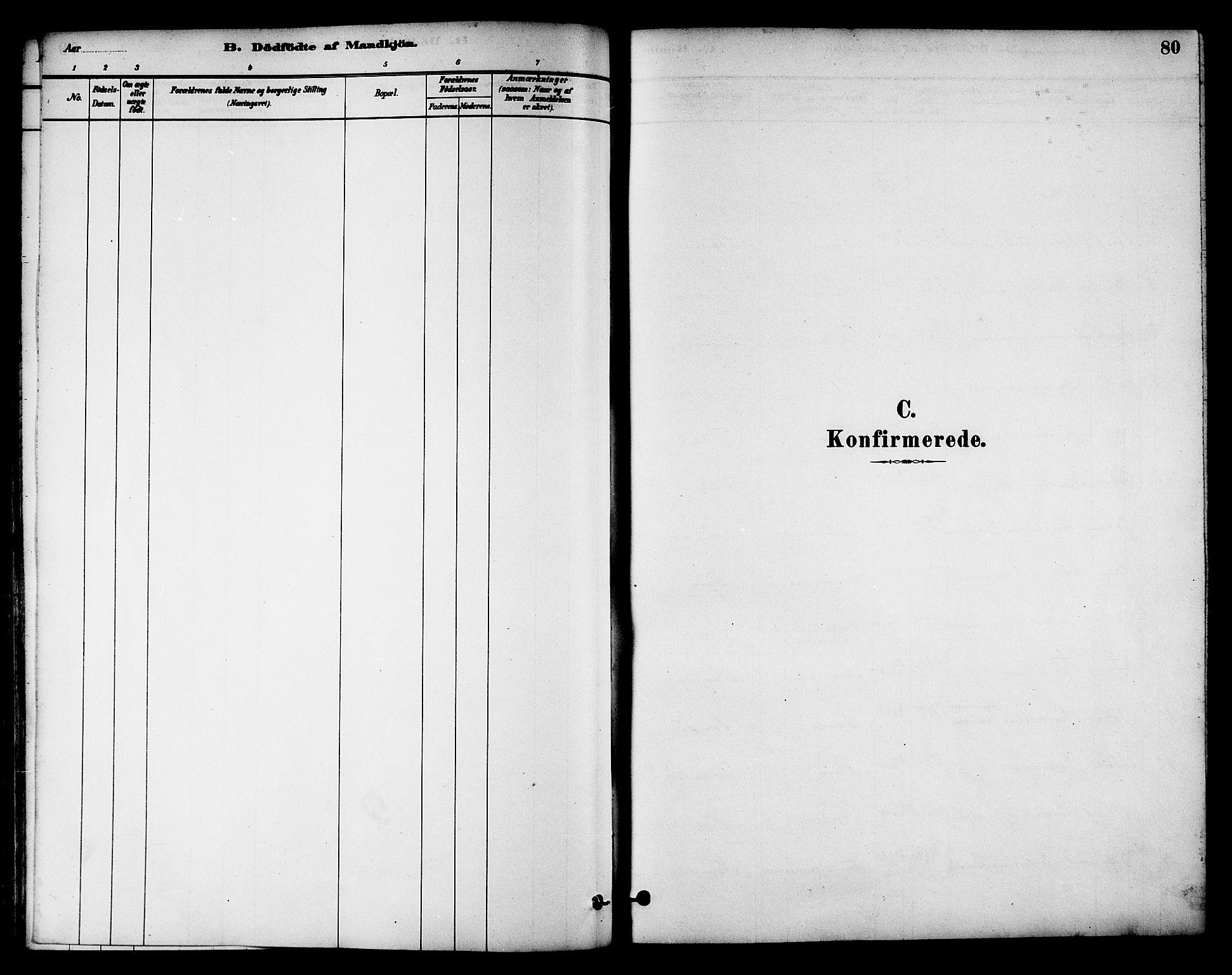 SAT, Ministerialprotokoller, klokkerbøker og fødselsregistre - Nord-Trøndelag, 784/L0672: Ministerialbok nr. 784A07, 1880-1887, s. 80