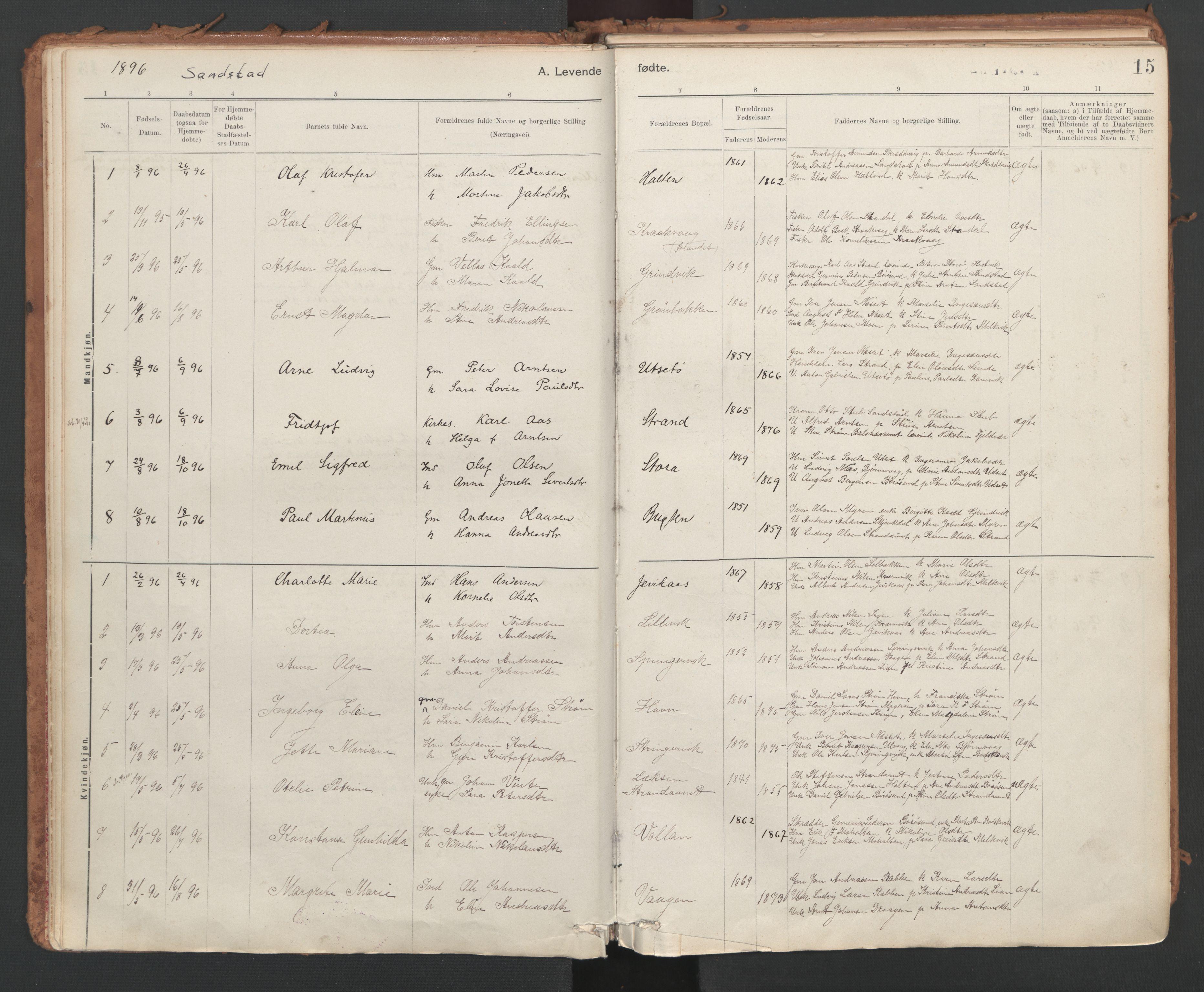 SAT, Ministerialprotokoller, klokkerbøker og fødselsregistre - Sør-Trøndelag, 639/L0572: Ministerialbok nr. 639A01, 1890-1920, s. 15