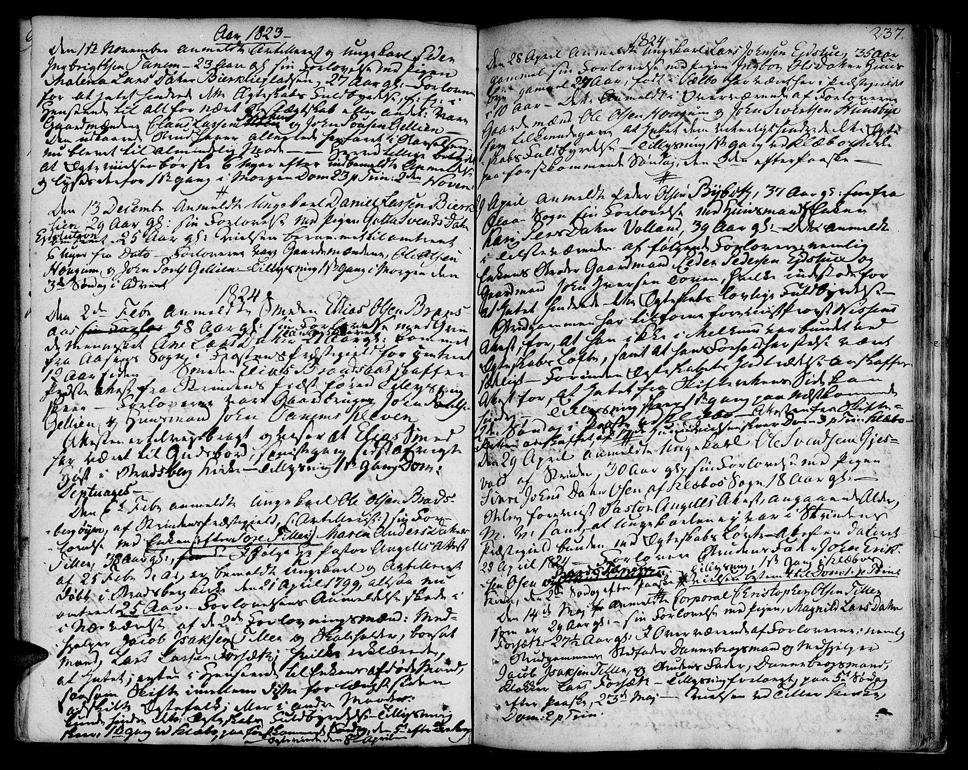 SAT, Ministerialprotokoller, klokkerbøker og fødselsregistre - Sør-Trøndelag, 618/L0438: Ministerialbok nr. 618A03, 1783-1815, s. 237