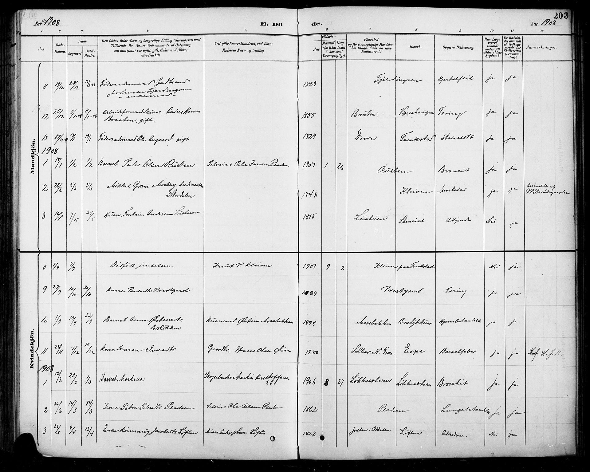 SAH, Sel prestekontor, Klokkerbok nr. 5, 1894-1923, s. 203