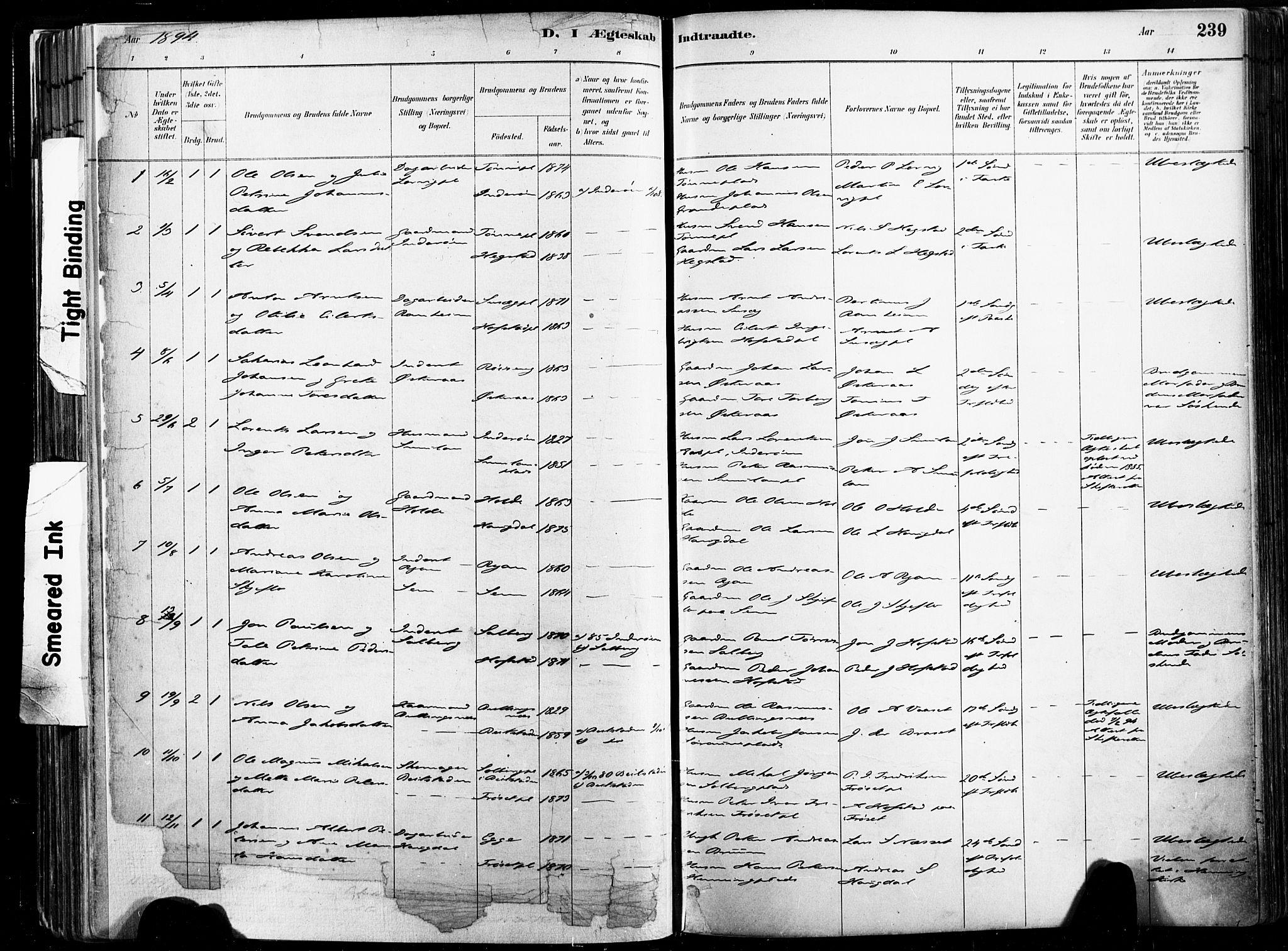 SAT, Ministerialprotokoller, klokkerbøker og fødselsregistre - Nord-Trøndelag, 735/L0351: Ministerialbok nr. 735A10, 1884-1908, s. 239