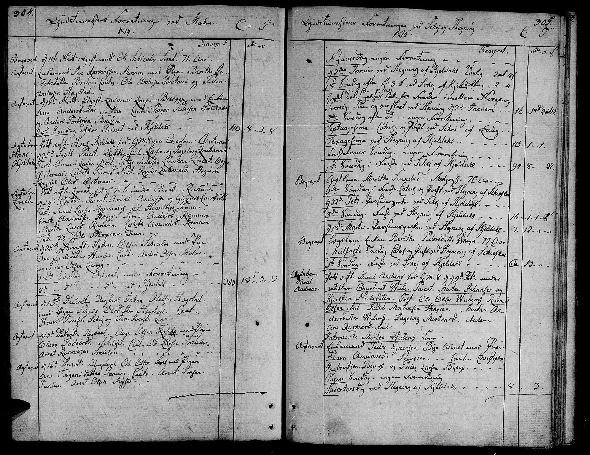 SAT, Ministerialprotokoller, klokkerbøker og fødselsregistre - Nord-Trøndelag, 735/L0332: Ministerialbok nr. 735A03, 1795-1816, s. 304-305